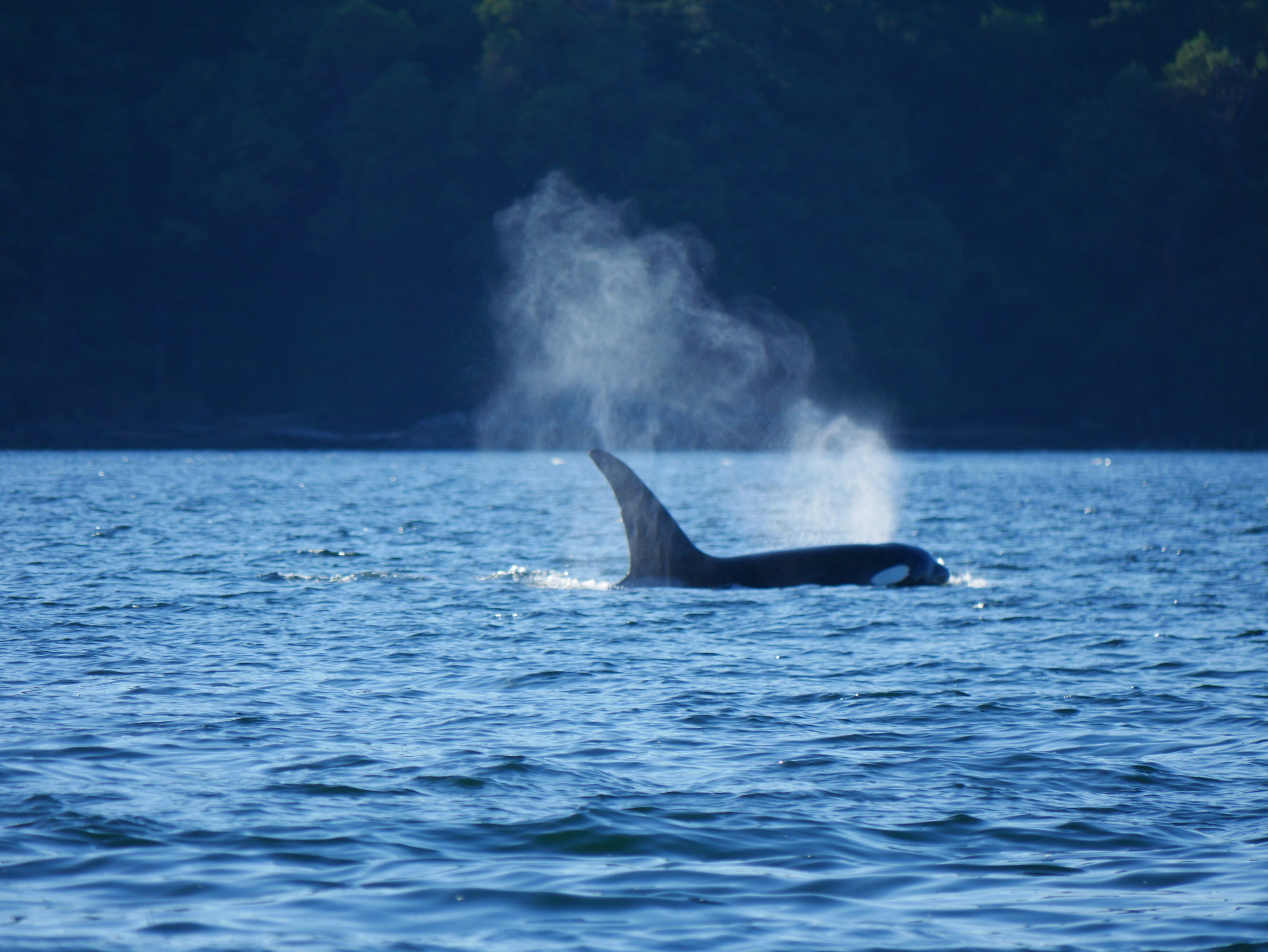 Big exhale!Photo by Alanna Vivani