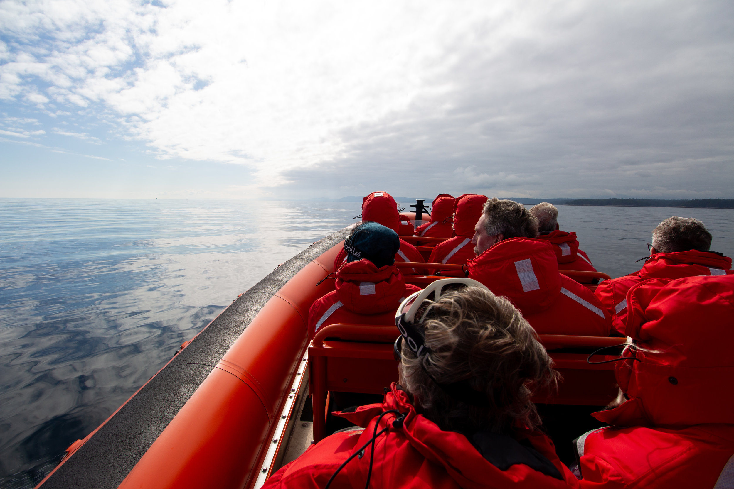 Scanning the Strait. Photo by Natalie Reichenbacher