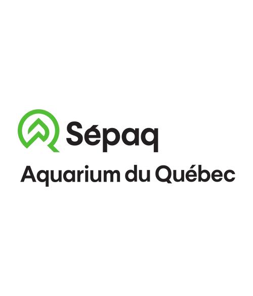 Noctura - Aquarium