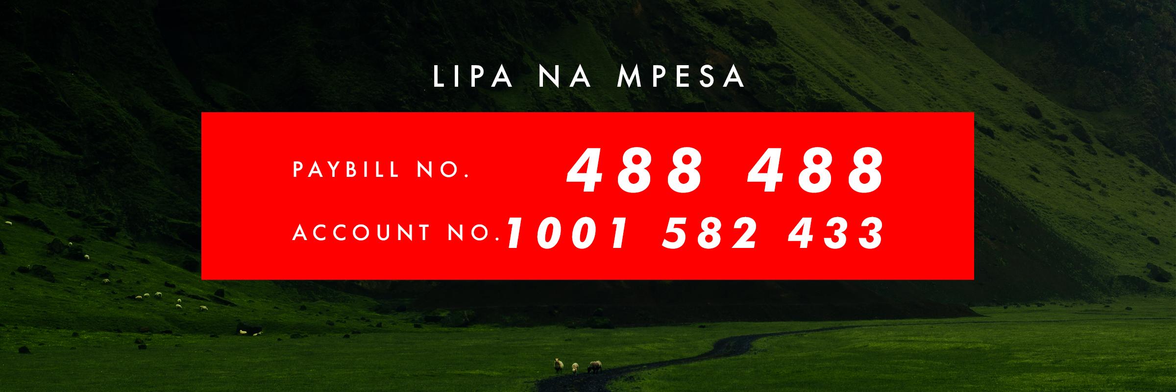 LIPA NA MPESA.jpg