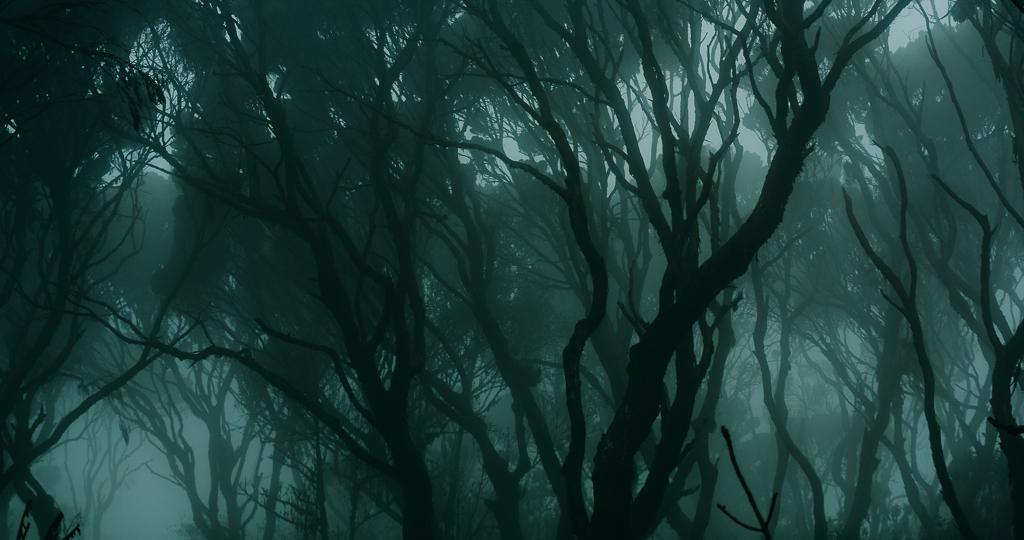 384_Spooky_[by @nairobiphoet]_Blog.jpg