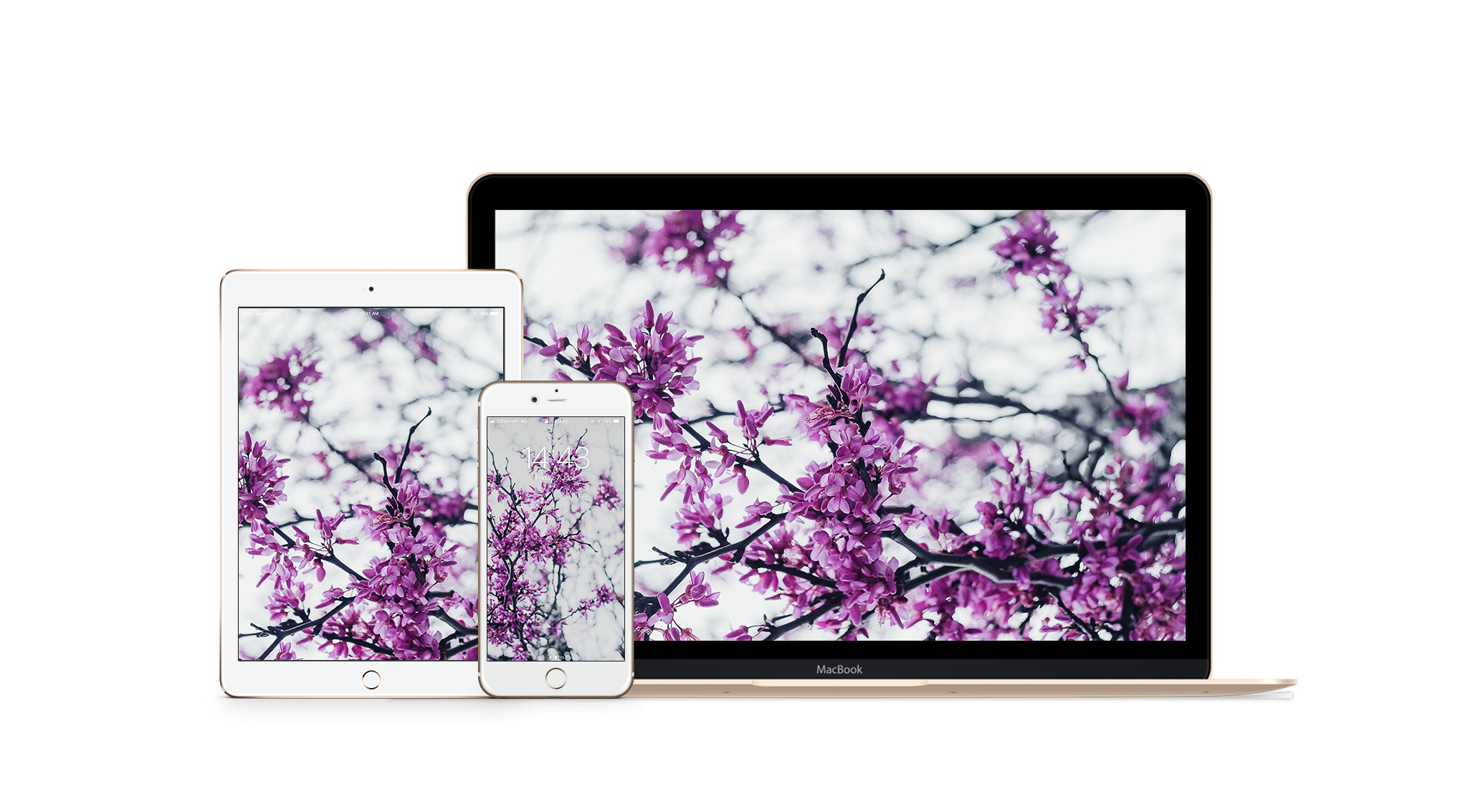388_Floral [by @OsseGrecaSinare]_Wallpaper_APPLE.jpg