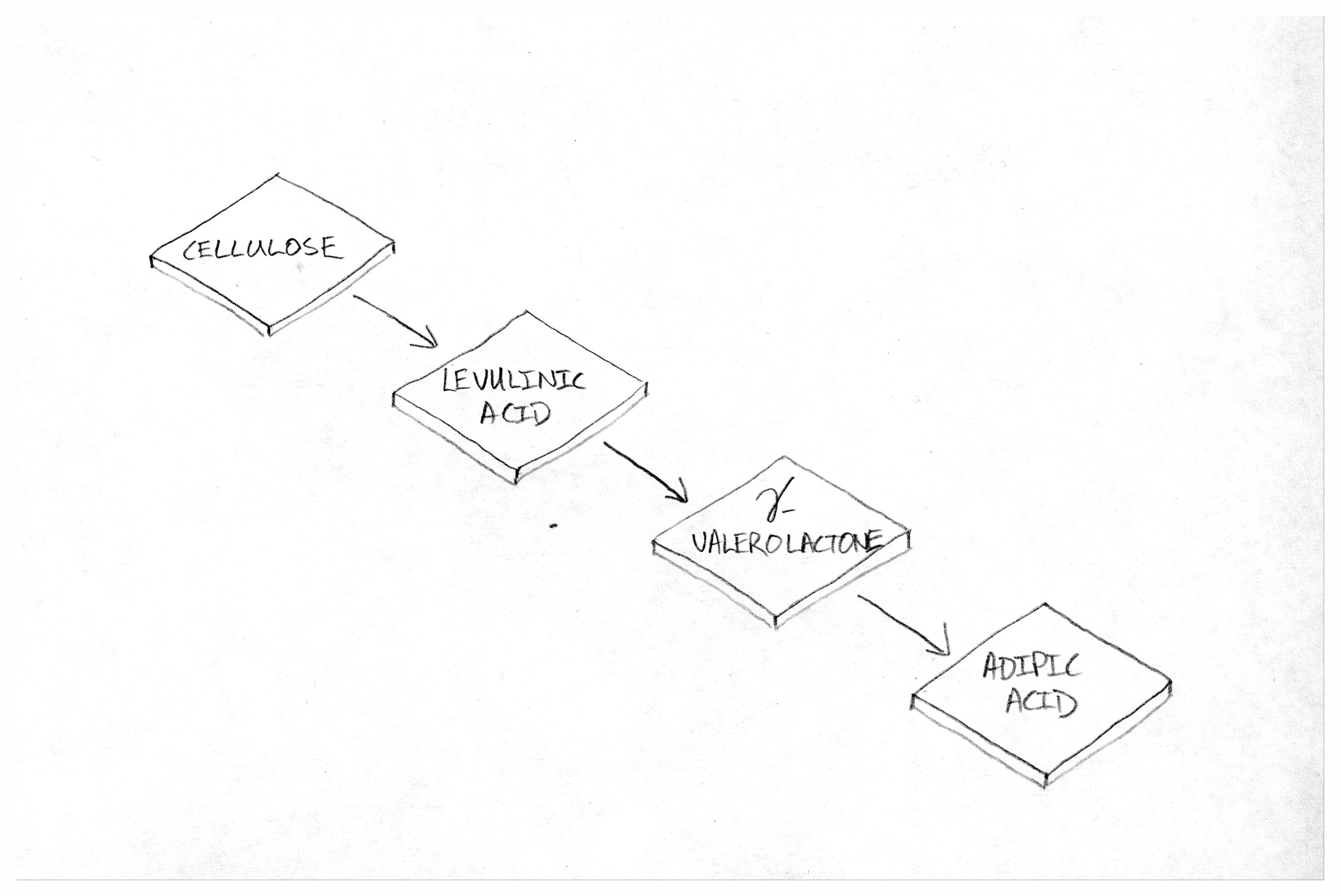 Figure 1: The Pathway.Essentially, a simple process flow diagram showing feedstocks, transformations to intermediates, and final product.