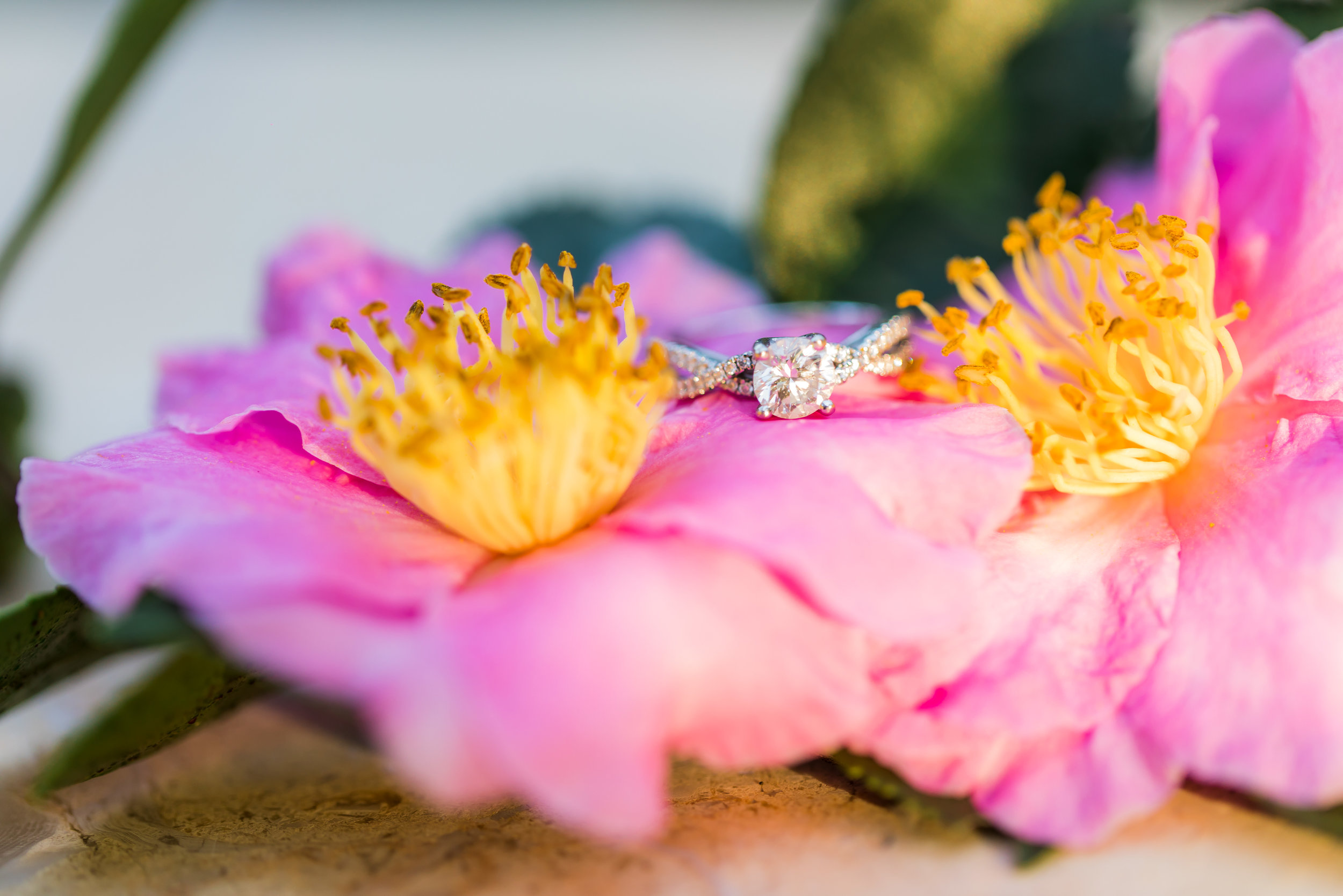 5 Tips for a Stress-Free Engagement Photo Shoot
