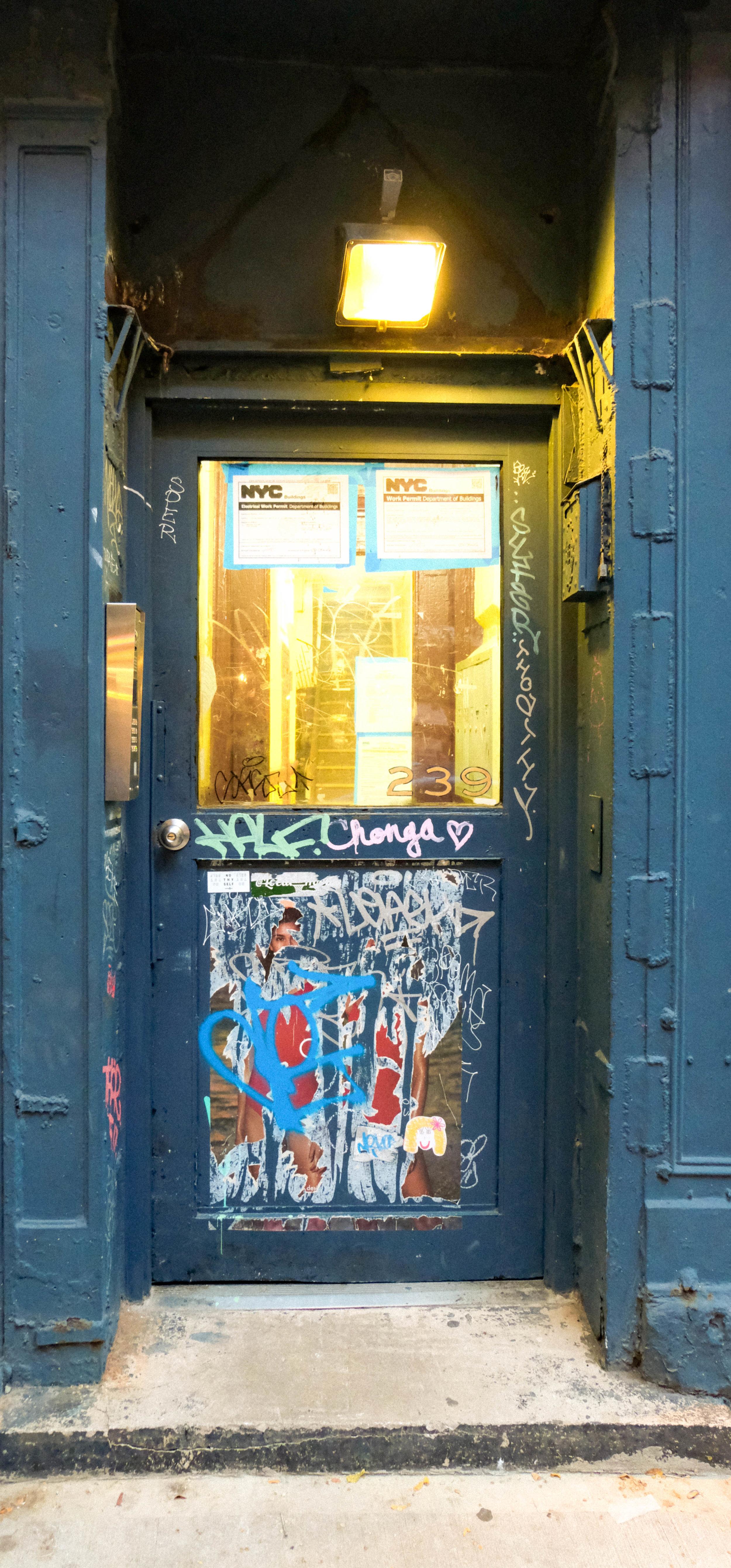 entry-door20