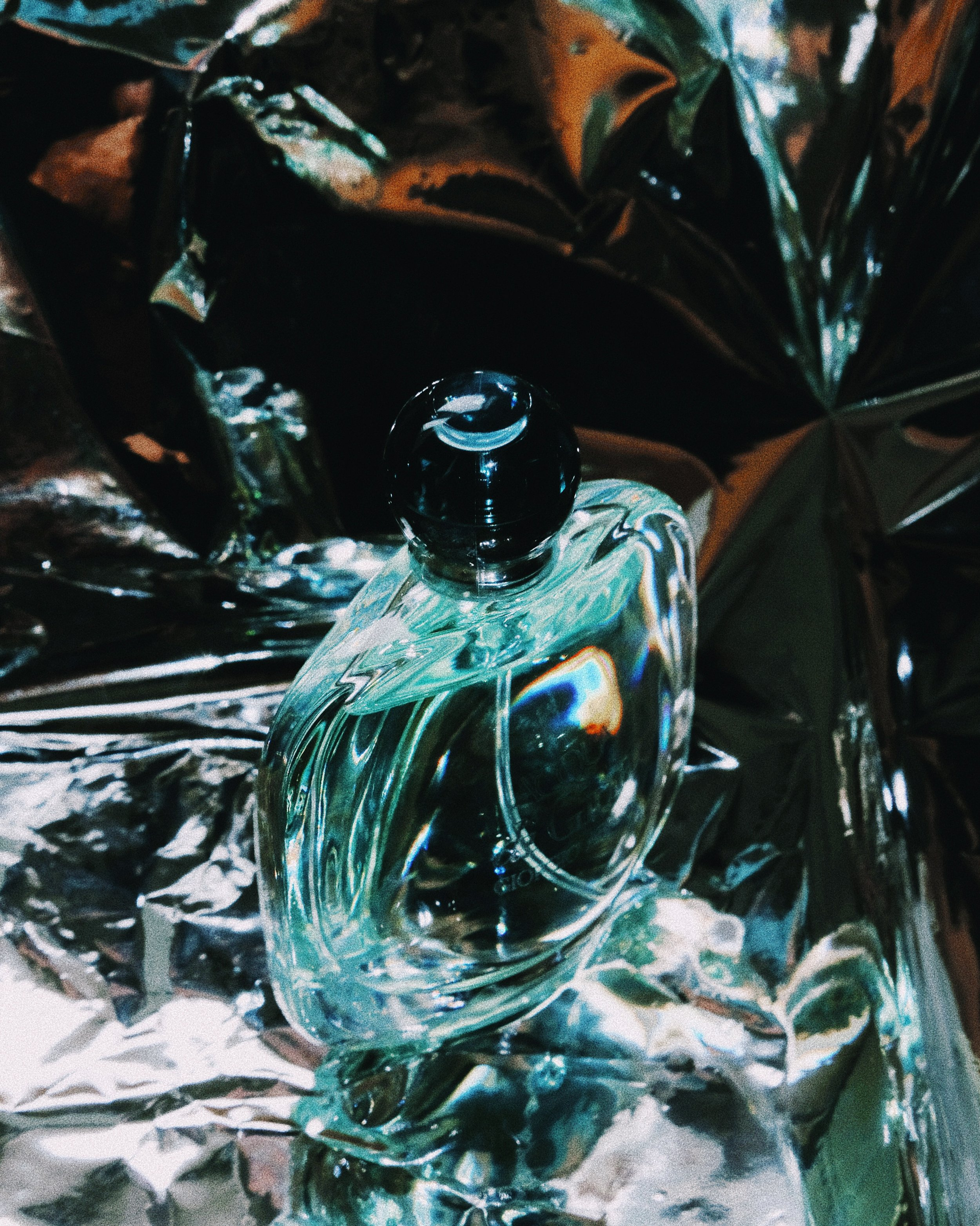 reflection-bottle-lauren-abbazio.JPG