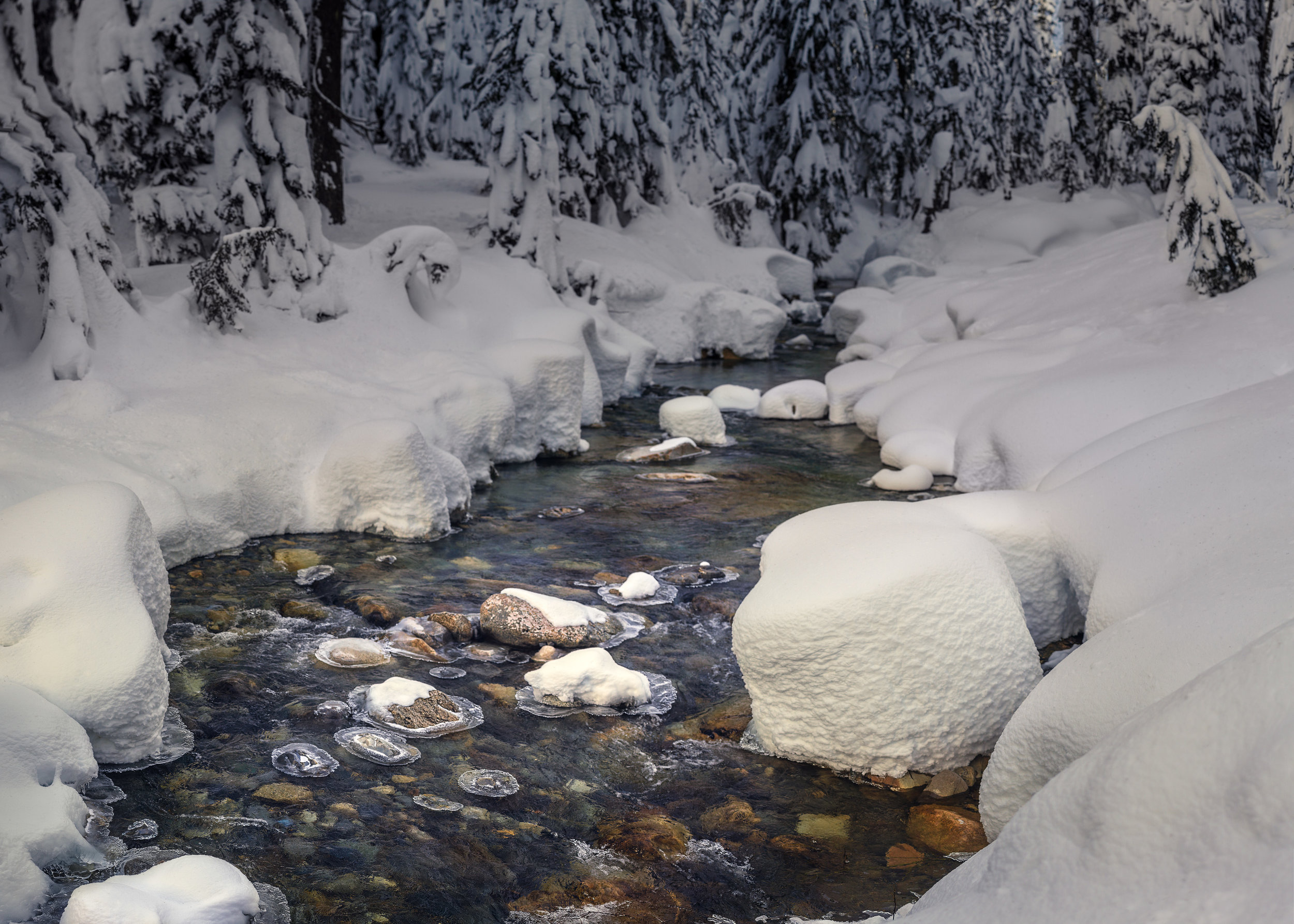 Winter's heart, fine art photograph captured in Snoqualmie,Washington during the winter. The photograph features a winter stream traveling diagonally through the images with a ray of light illuminating a narrow region of the spring. Snow covers the landscape and evergreen trees, laden with snow, rim the edges of the scene. The photograph is cool with a hint of warm tones where the sunlight touches the stream. It was captured as a bokeh panoramic, the result leaves a very painterly feeling to image.