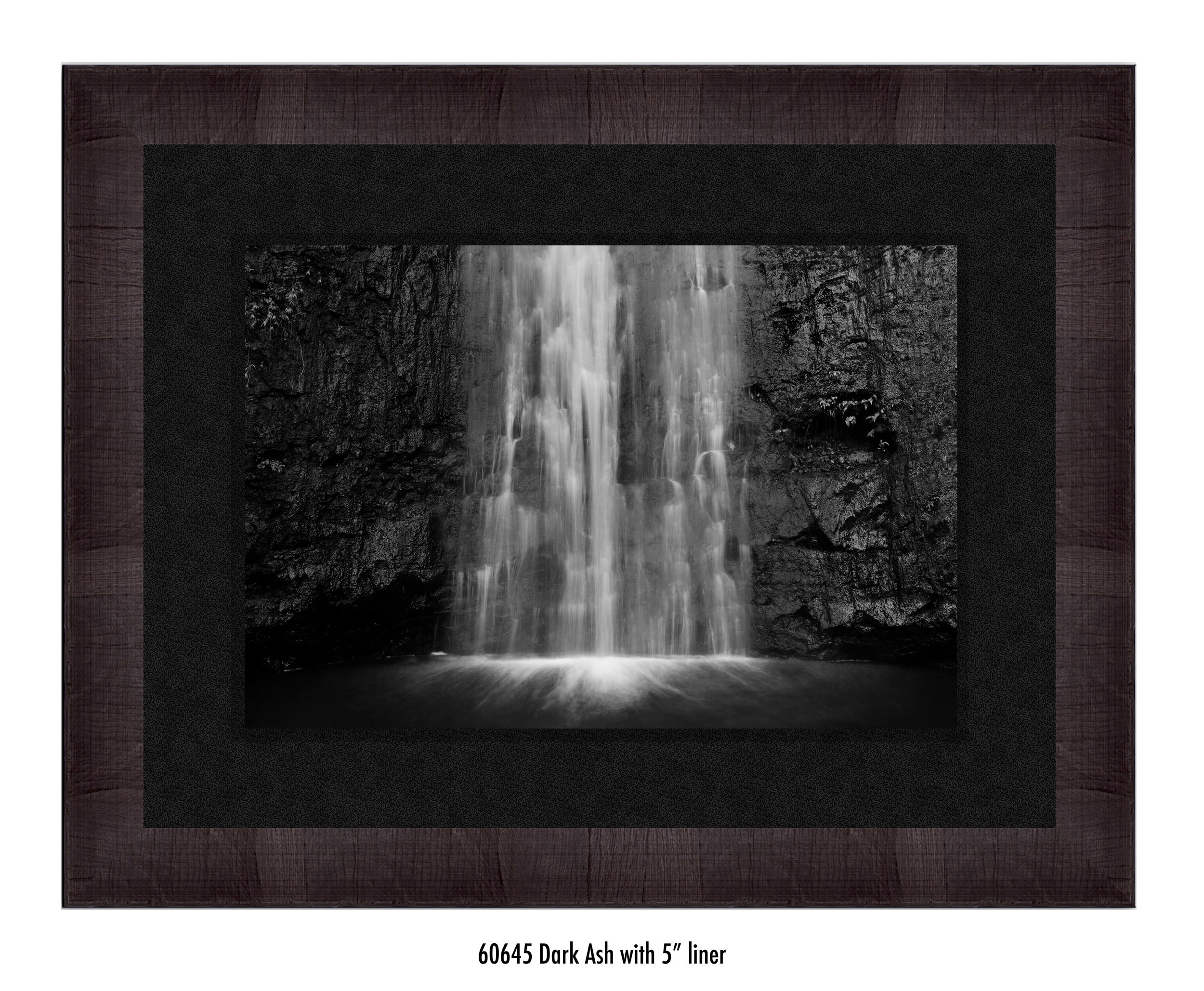 Manoa-Falls-60645-5-blk.jpg