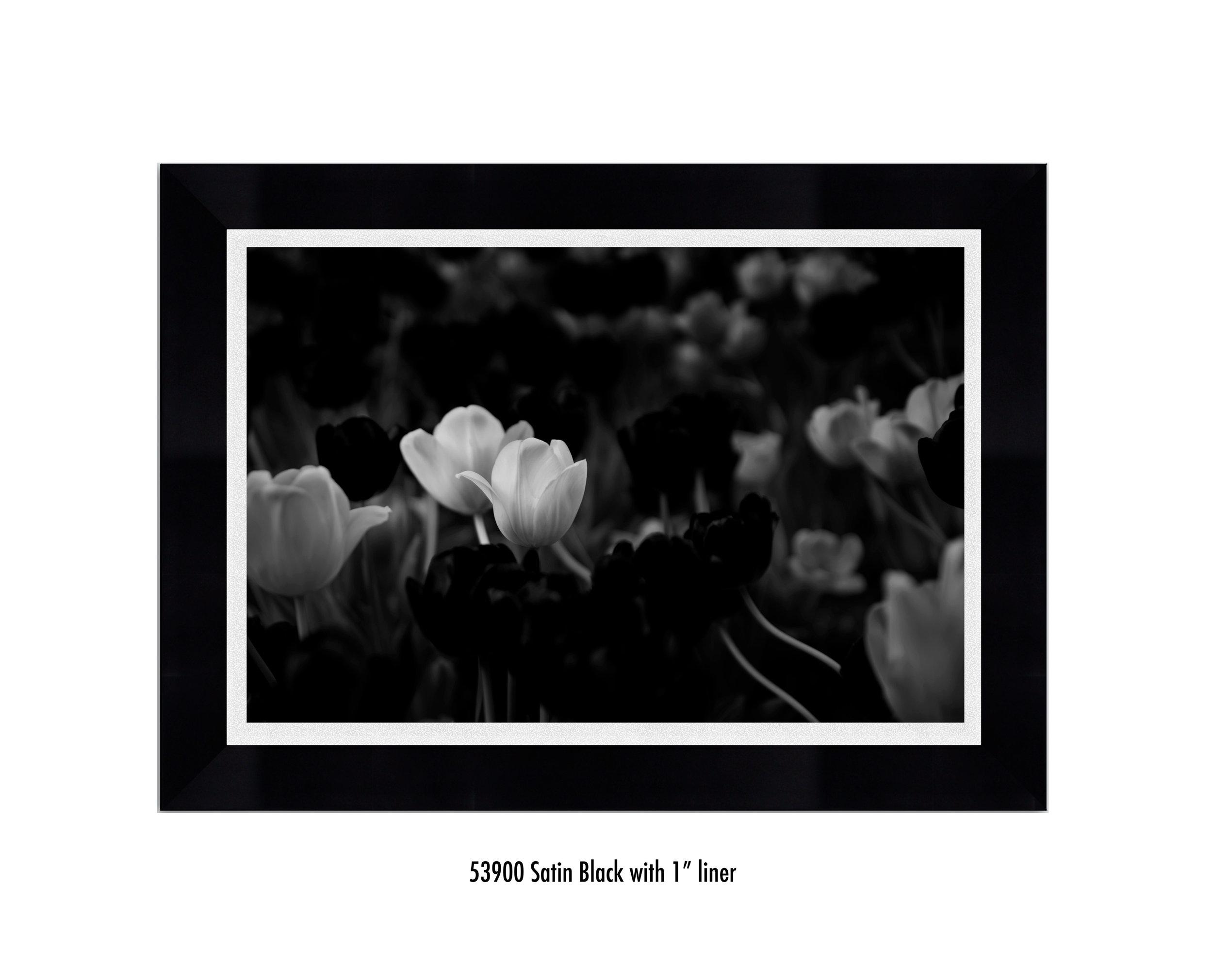 White-Flower-53900-1-wht.jpg