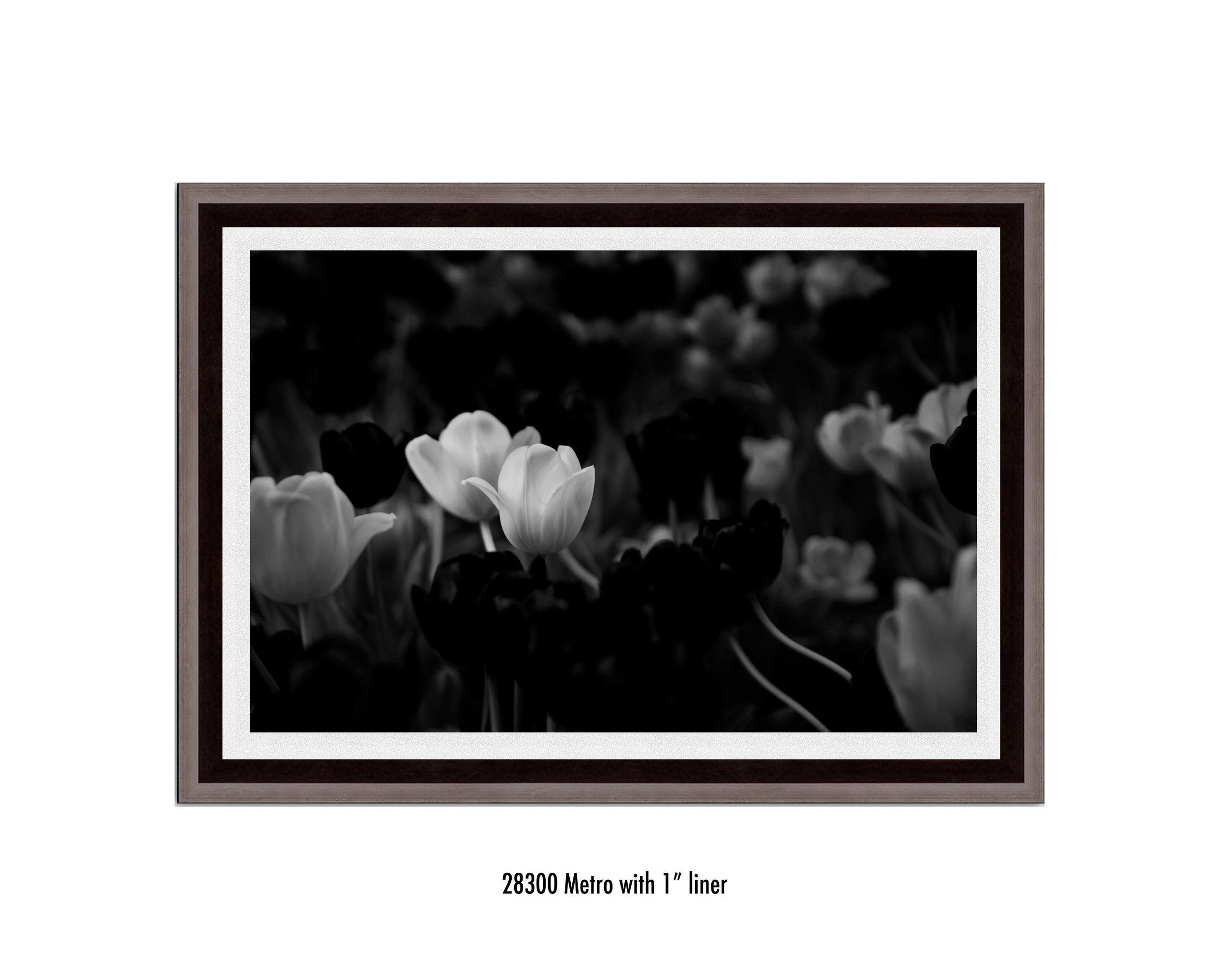 White-Flower-28300-1-wht.jpg