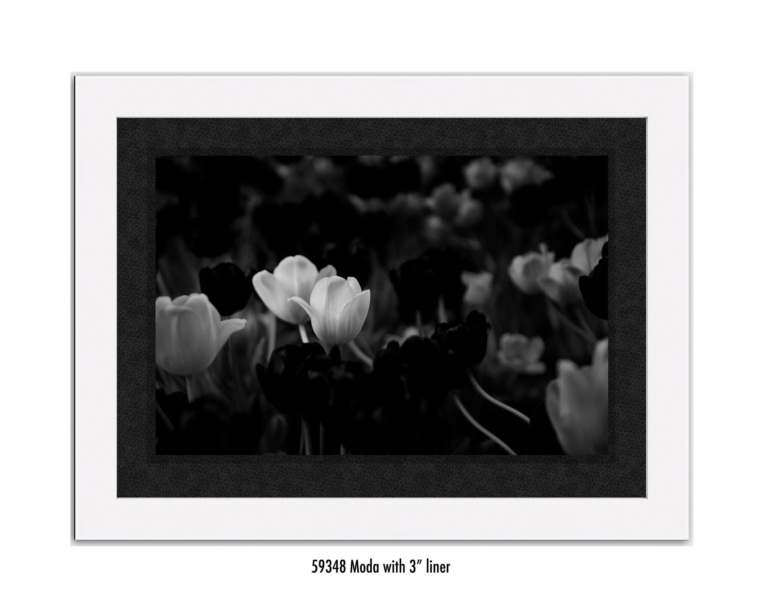White-Flower-59394-3-blk.jpg