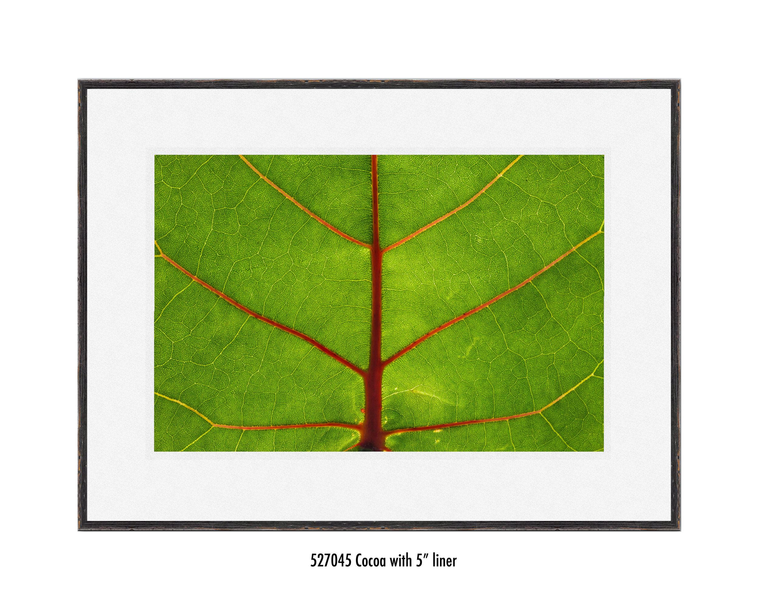 Leaf-527045-5-wht.jpg