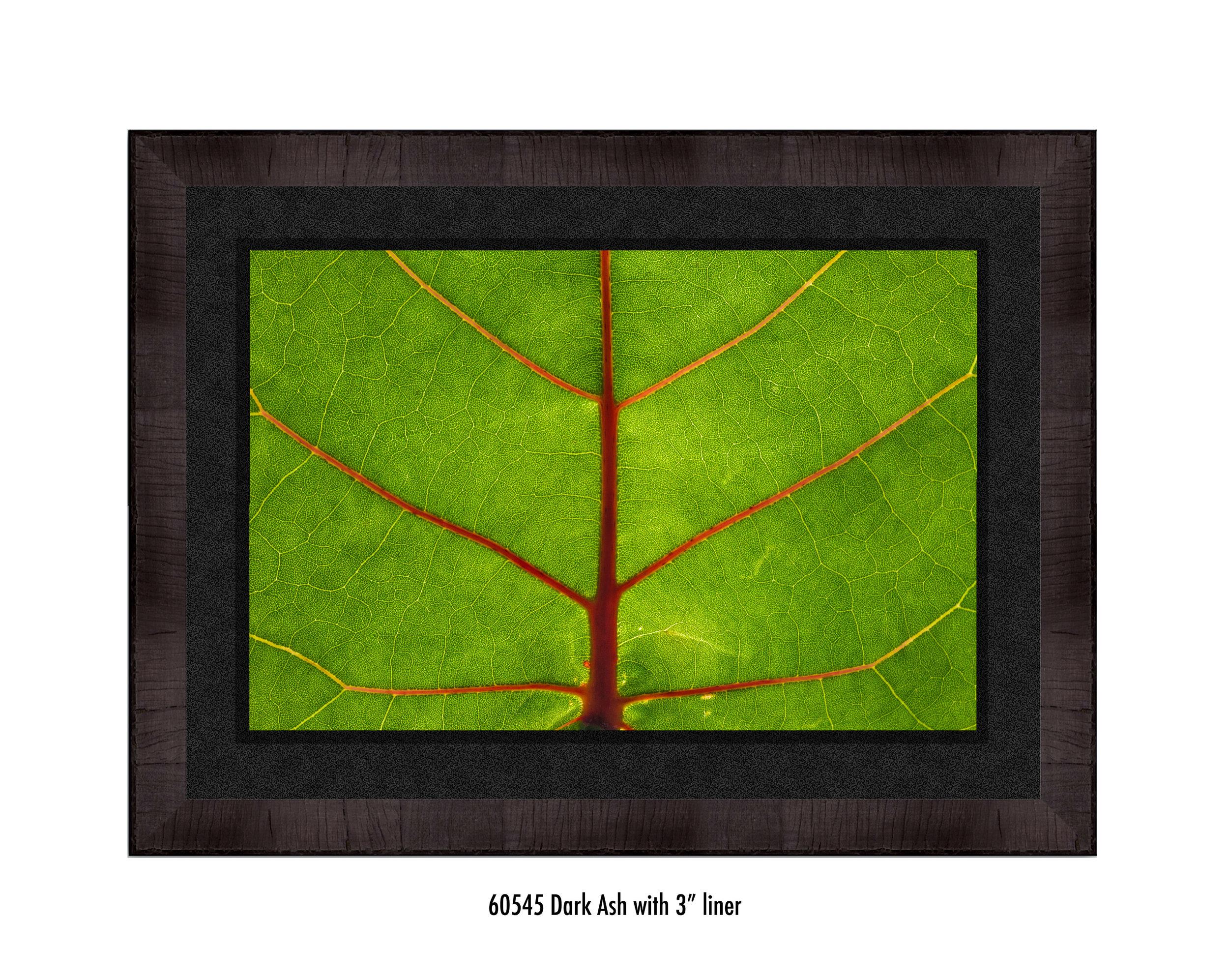 Leaf-60545-3-blk.jpg