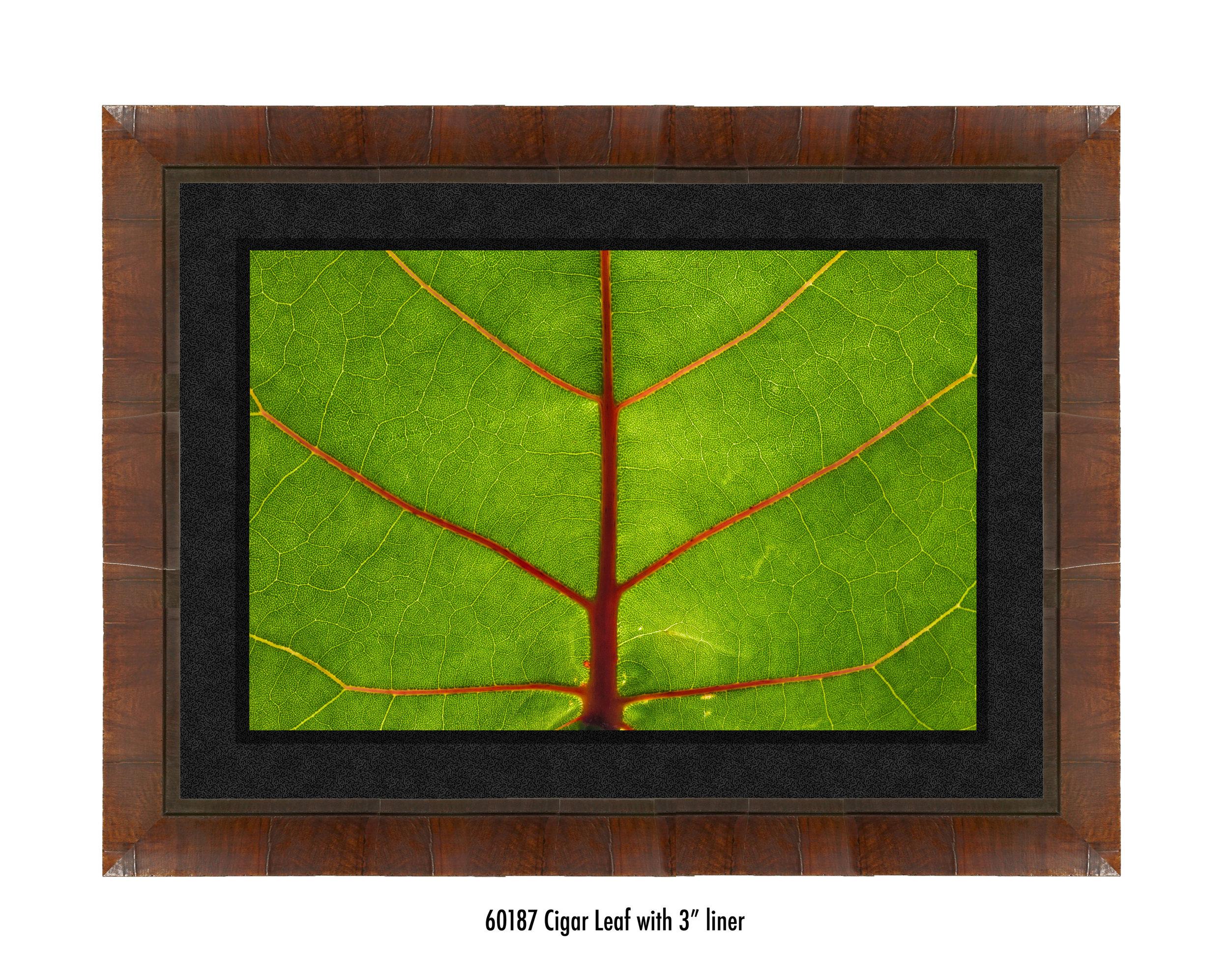 Leaf-60187-3-blk.jpg