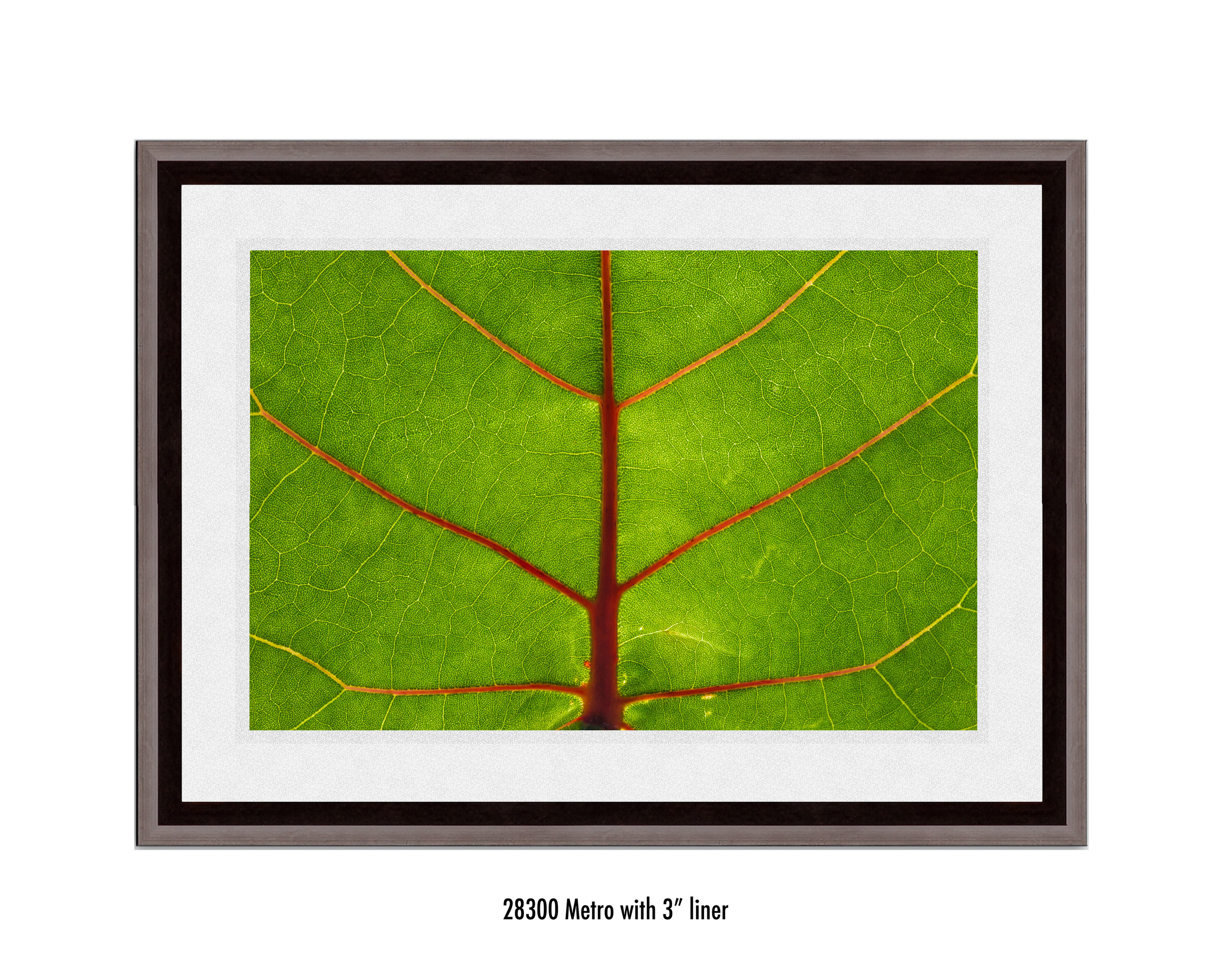 Leaf-28300-3-wht.jpg
