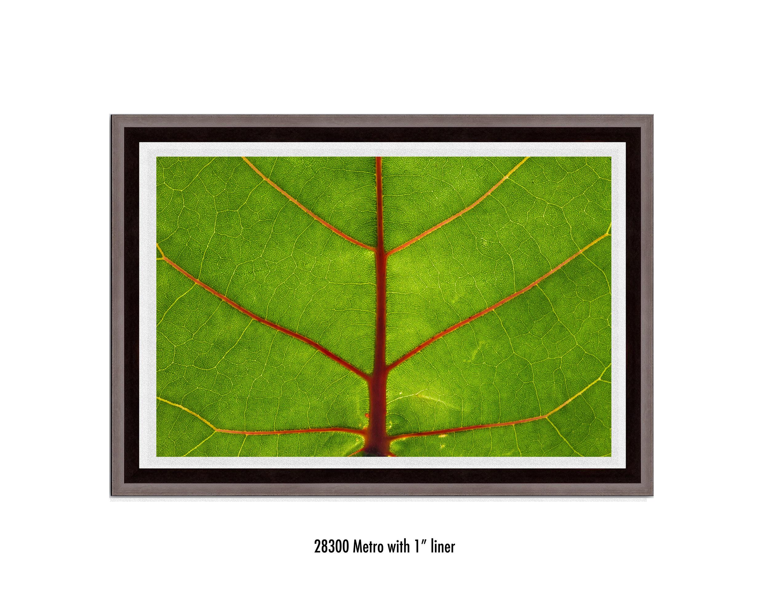 Leaf-28300-1-wht.jpg