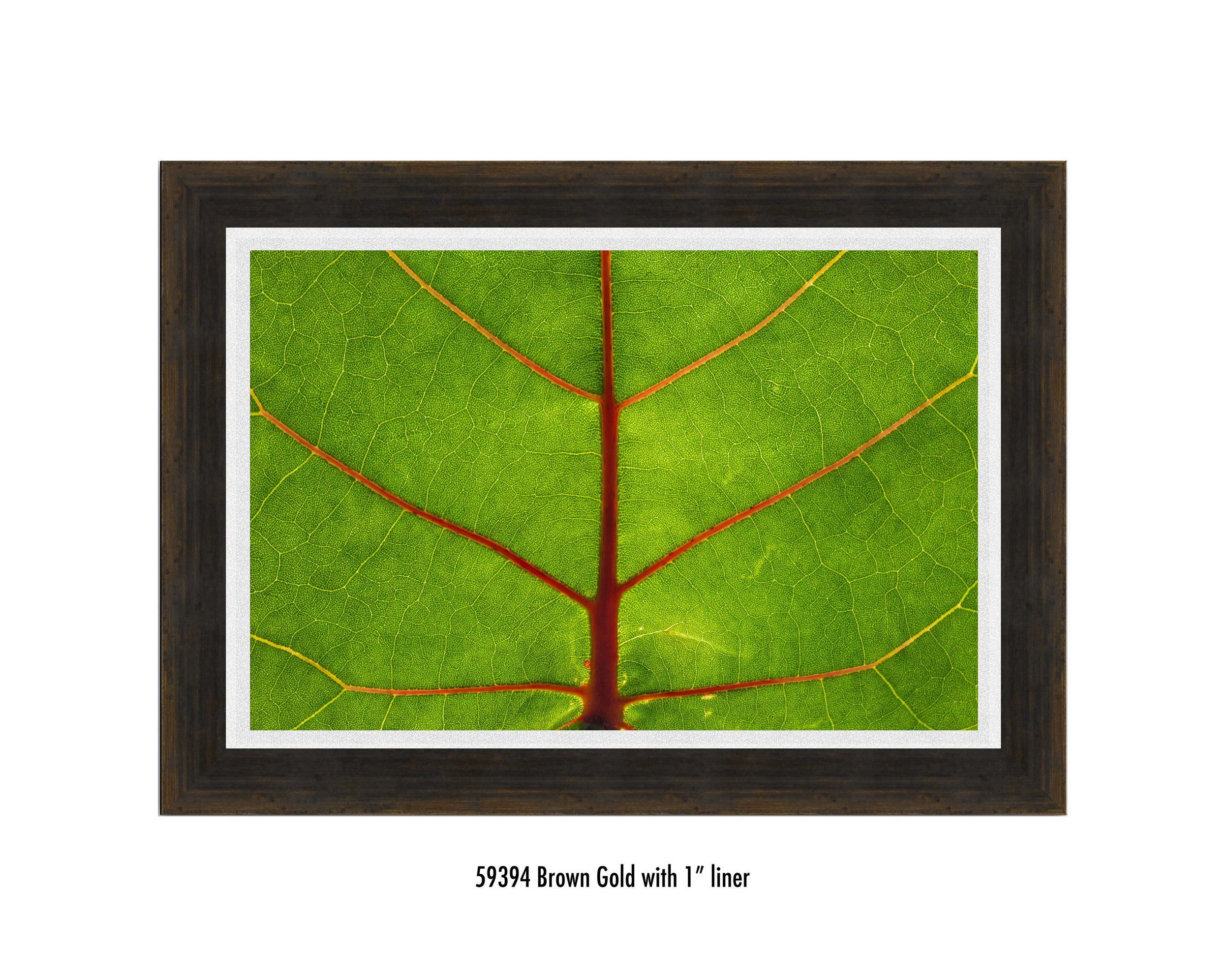 Leaf-59394-1-wht.jpg