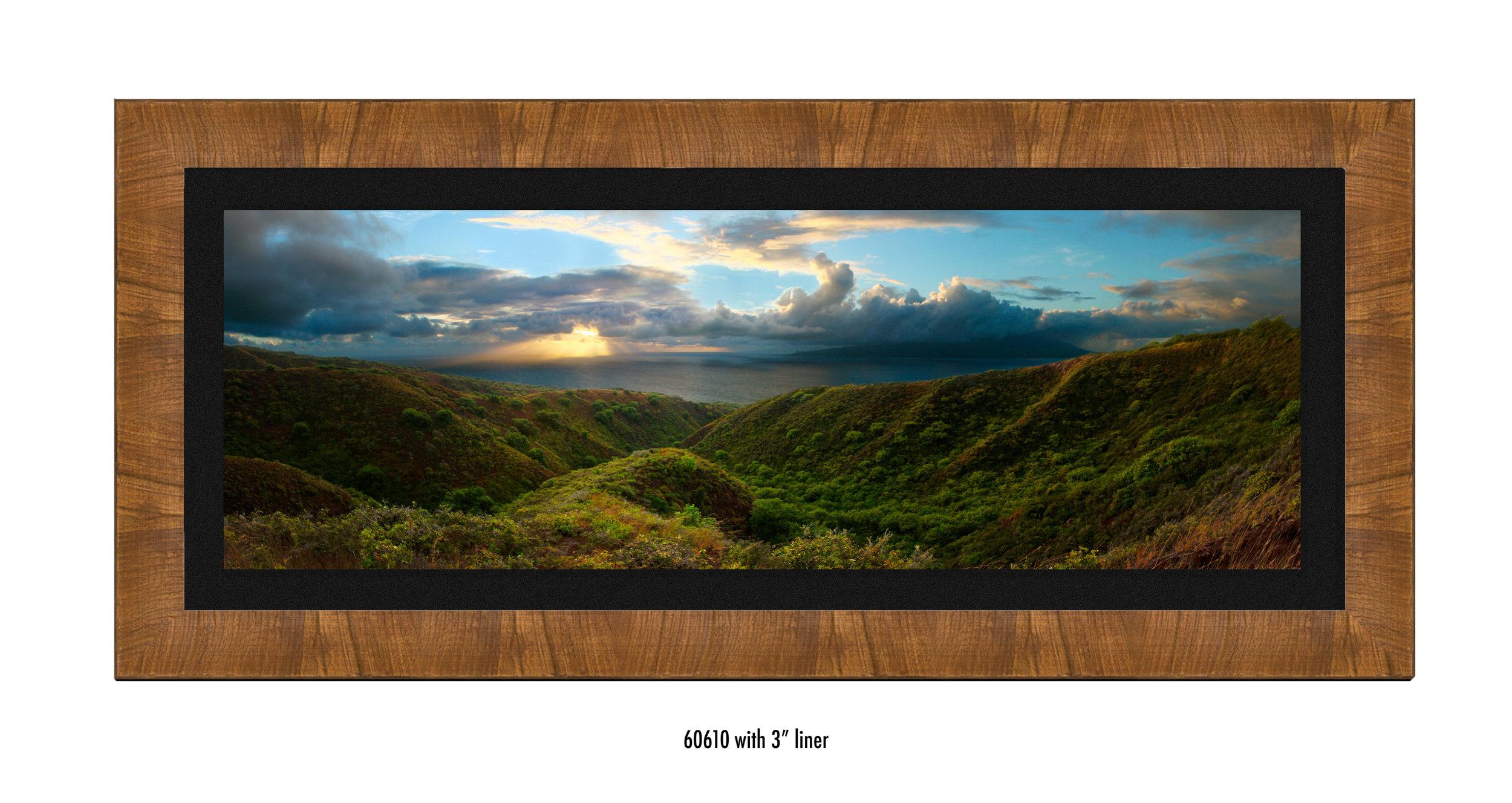 Molokai-Panorama-60610-blk.jpg