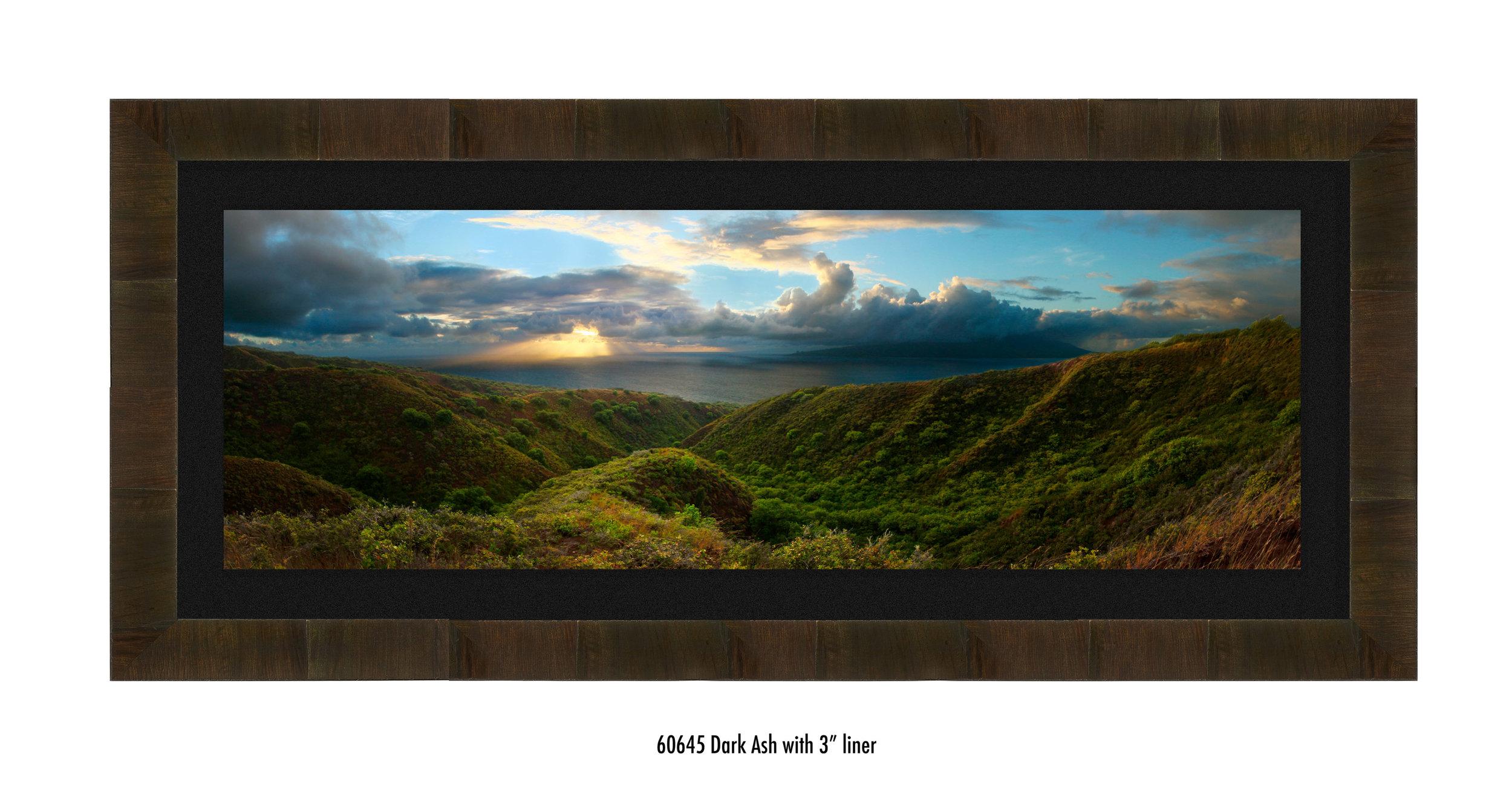 Molokai-Panorama-60645-blk.jpg