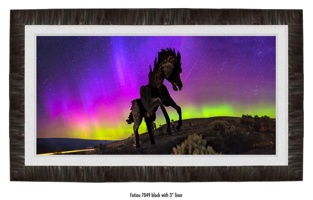 Wild-Horses-7409BK-wht.jpg