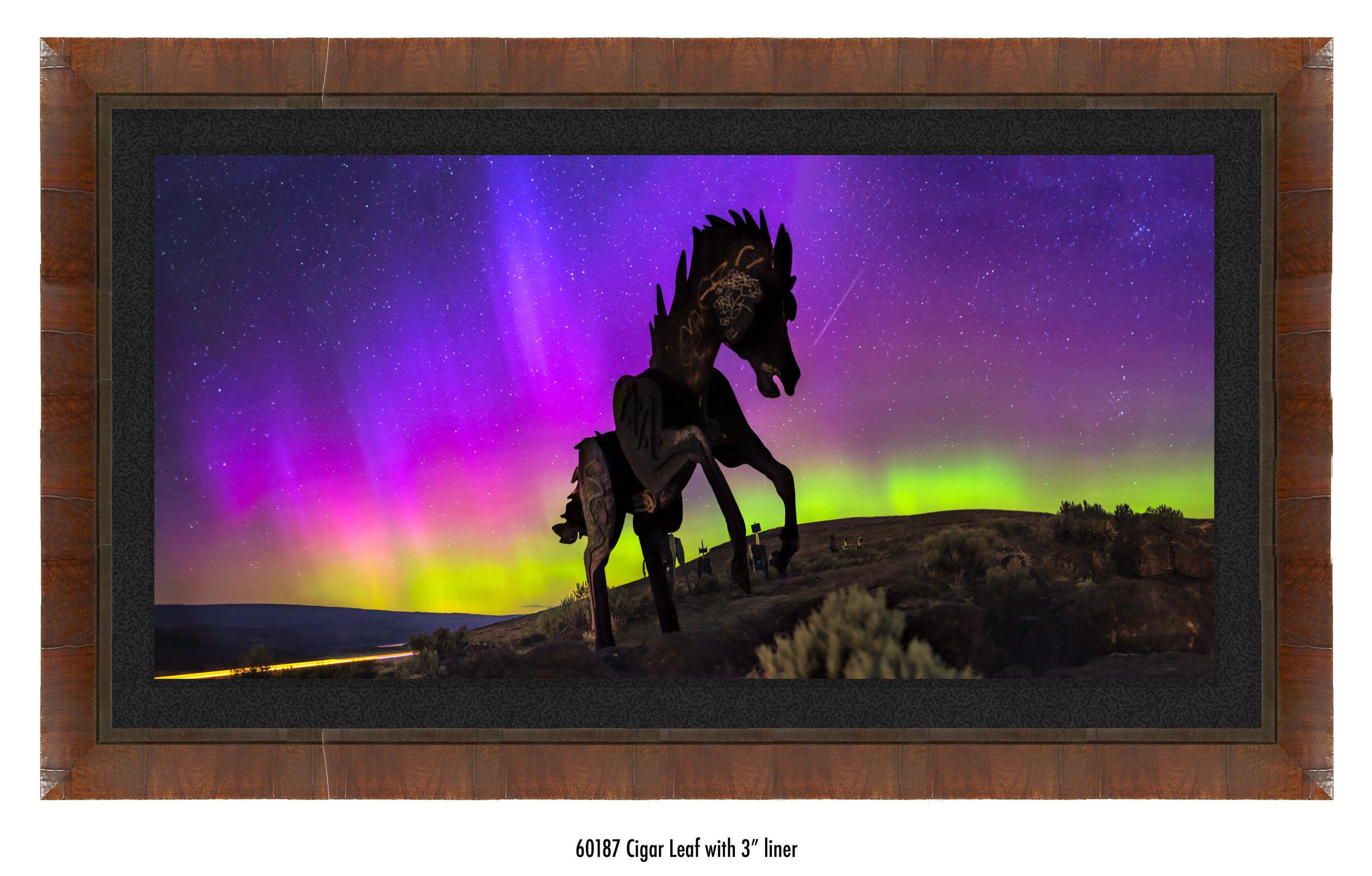 Wild-Horses-60187-blk.jpg
