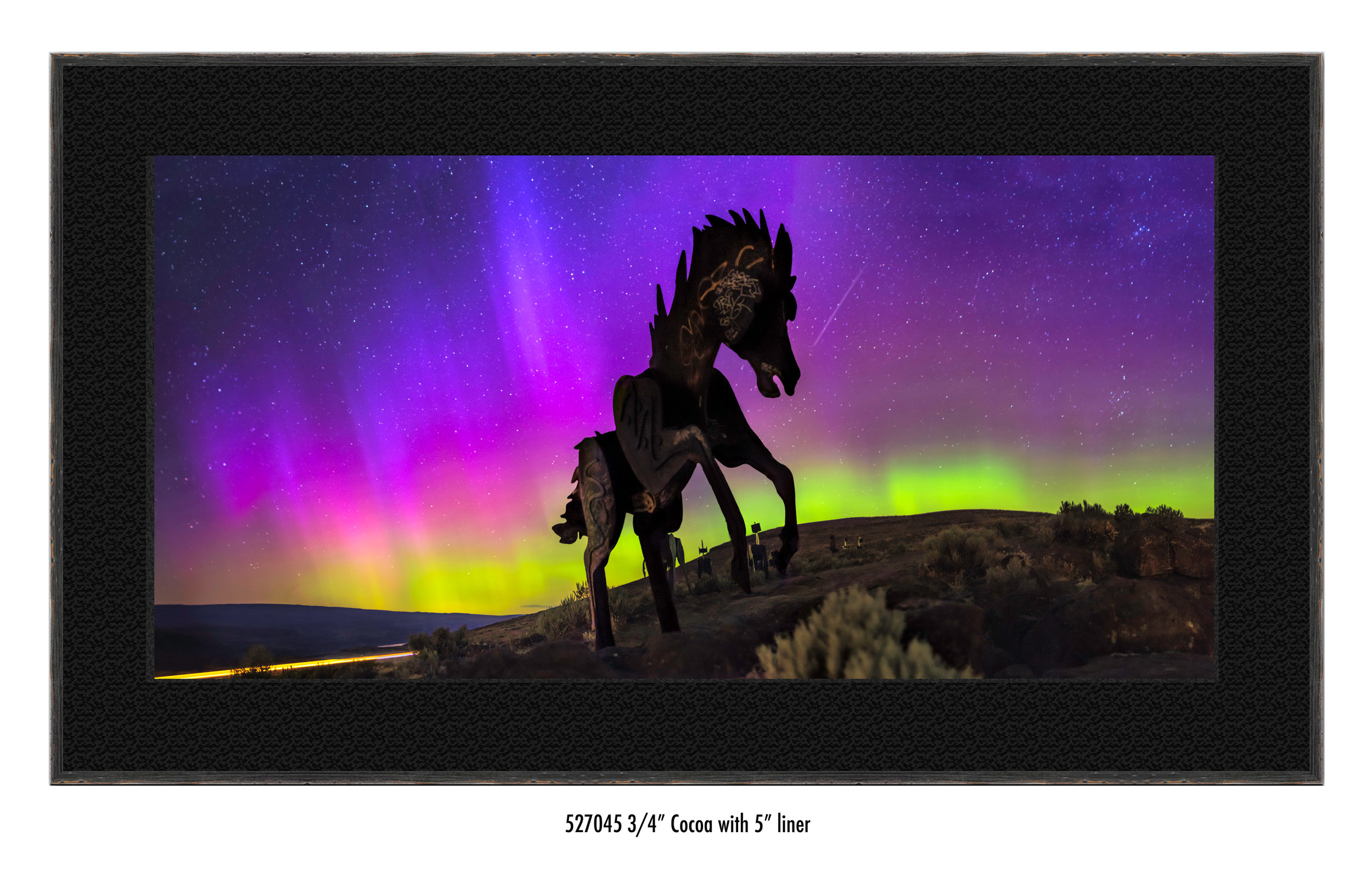 Wild-Horses-527045-blk.jpg
