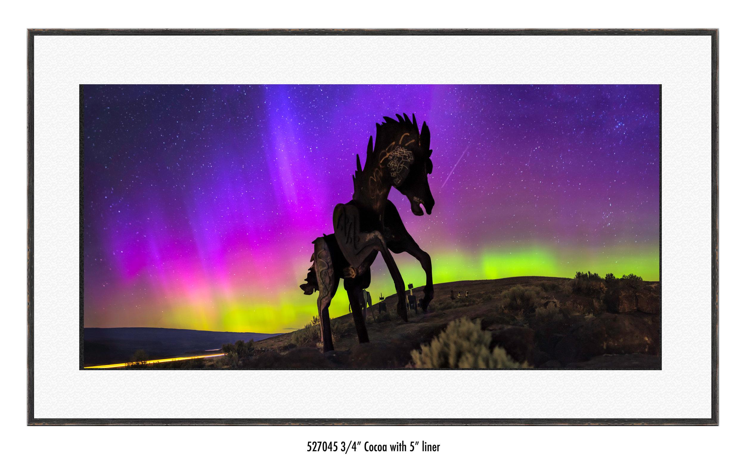 Wild-Horses-527045-wht.jpg