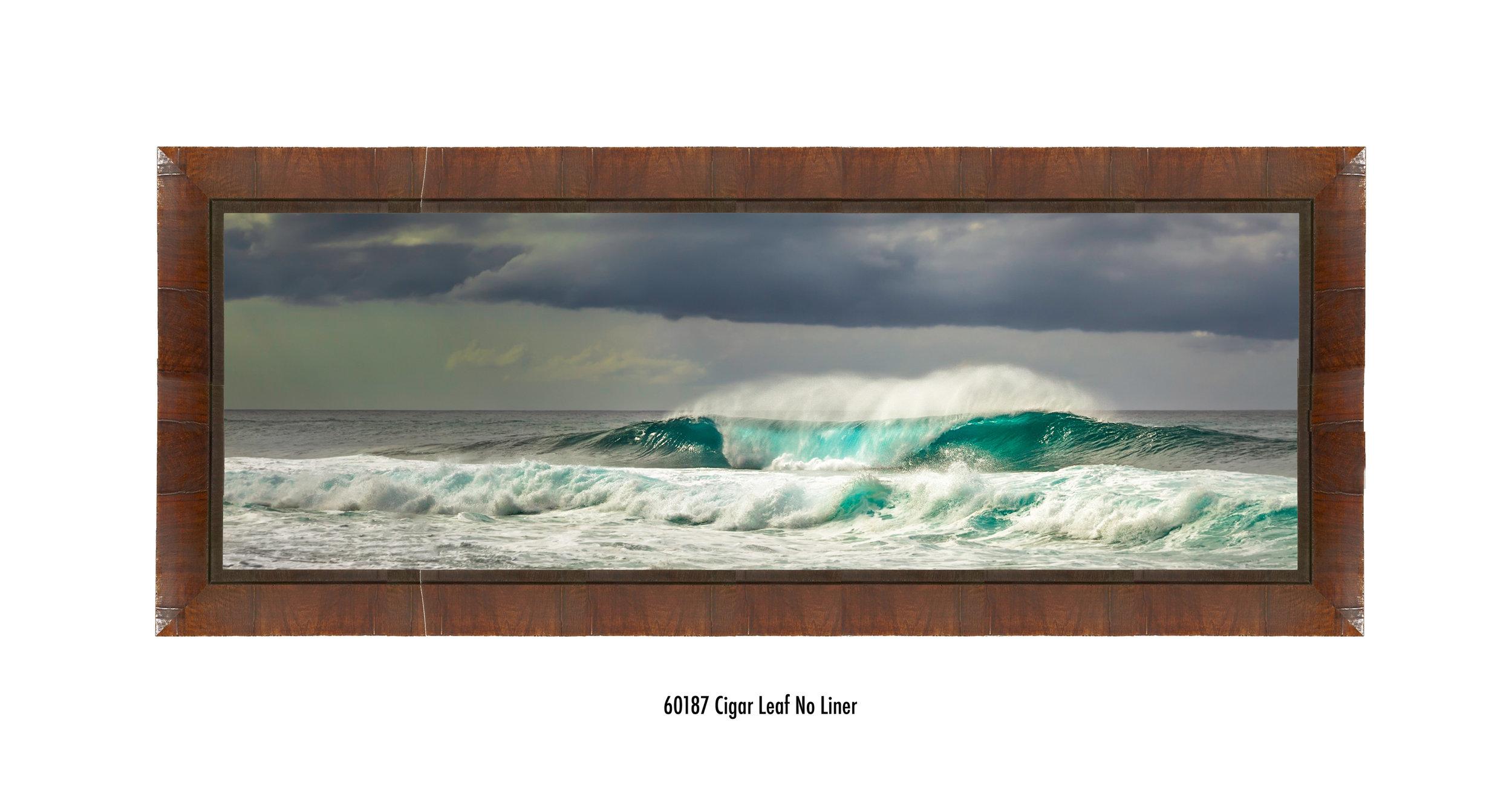 First-Reef-60187-none.jpg