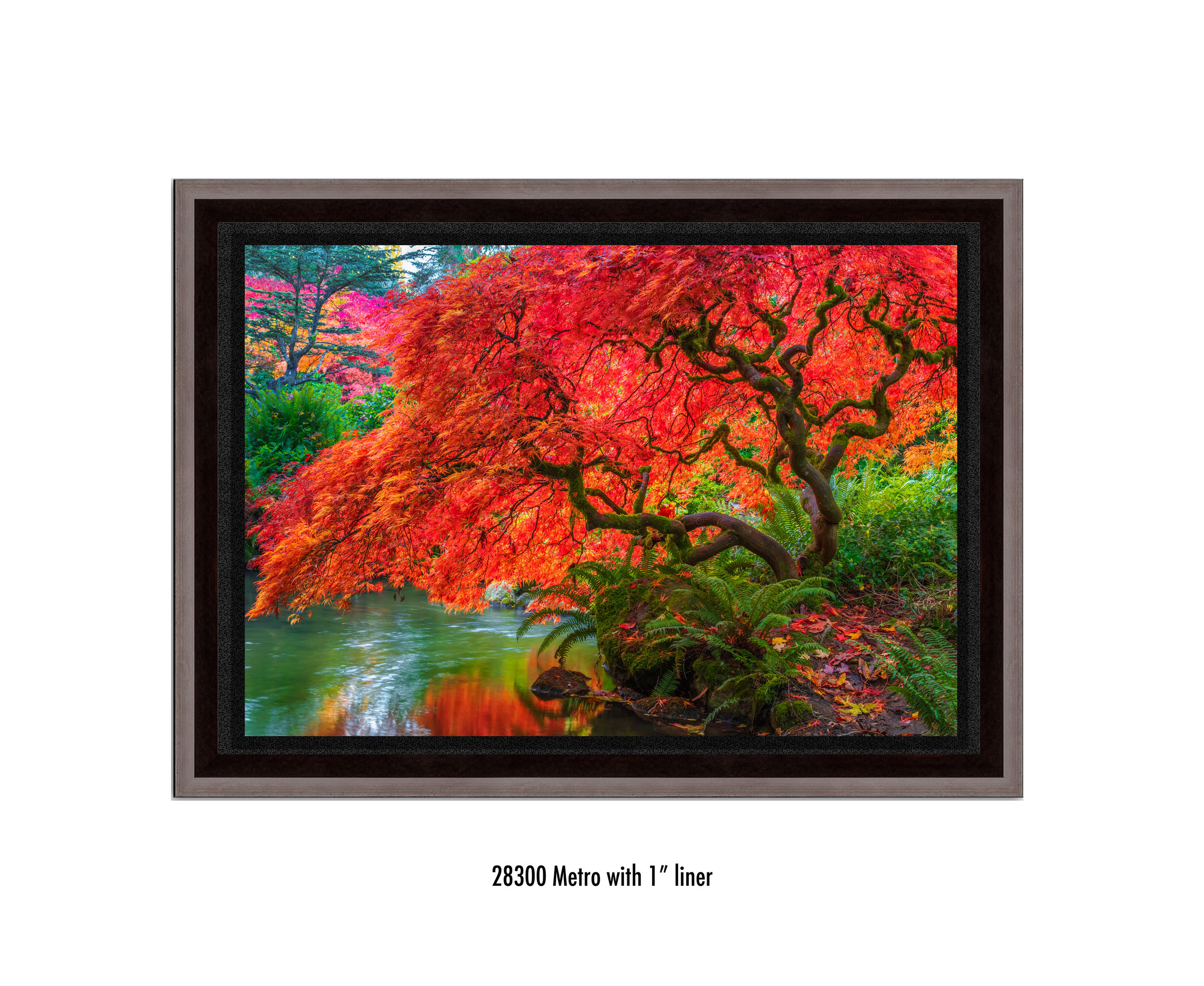 Tree-of-Fire-28300-1-blk.jpg