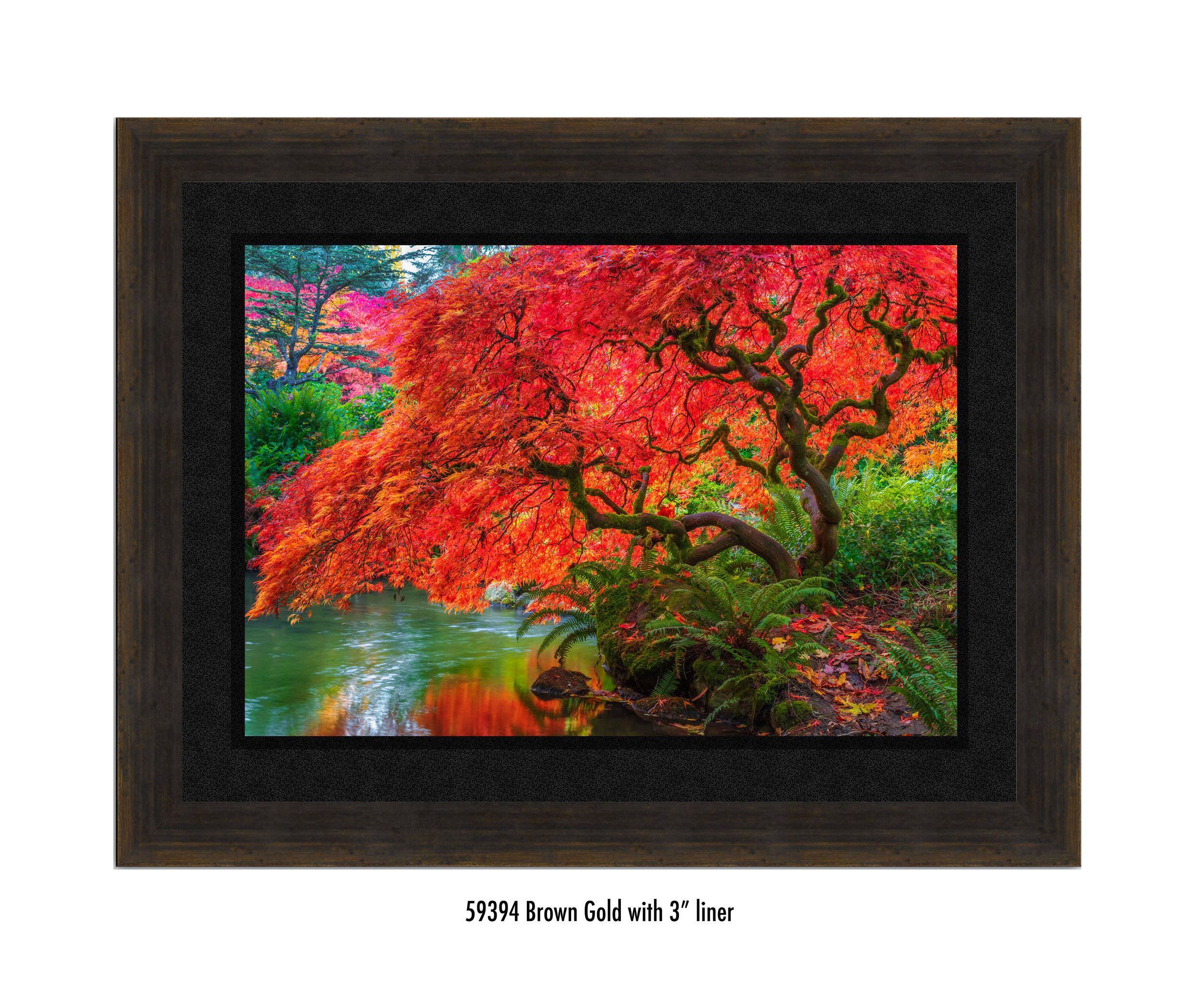 Tree-of-Fire-59394-3-blk.jpg