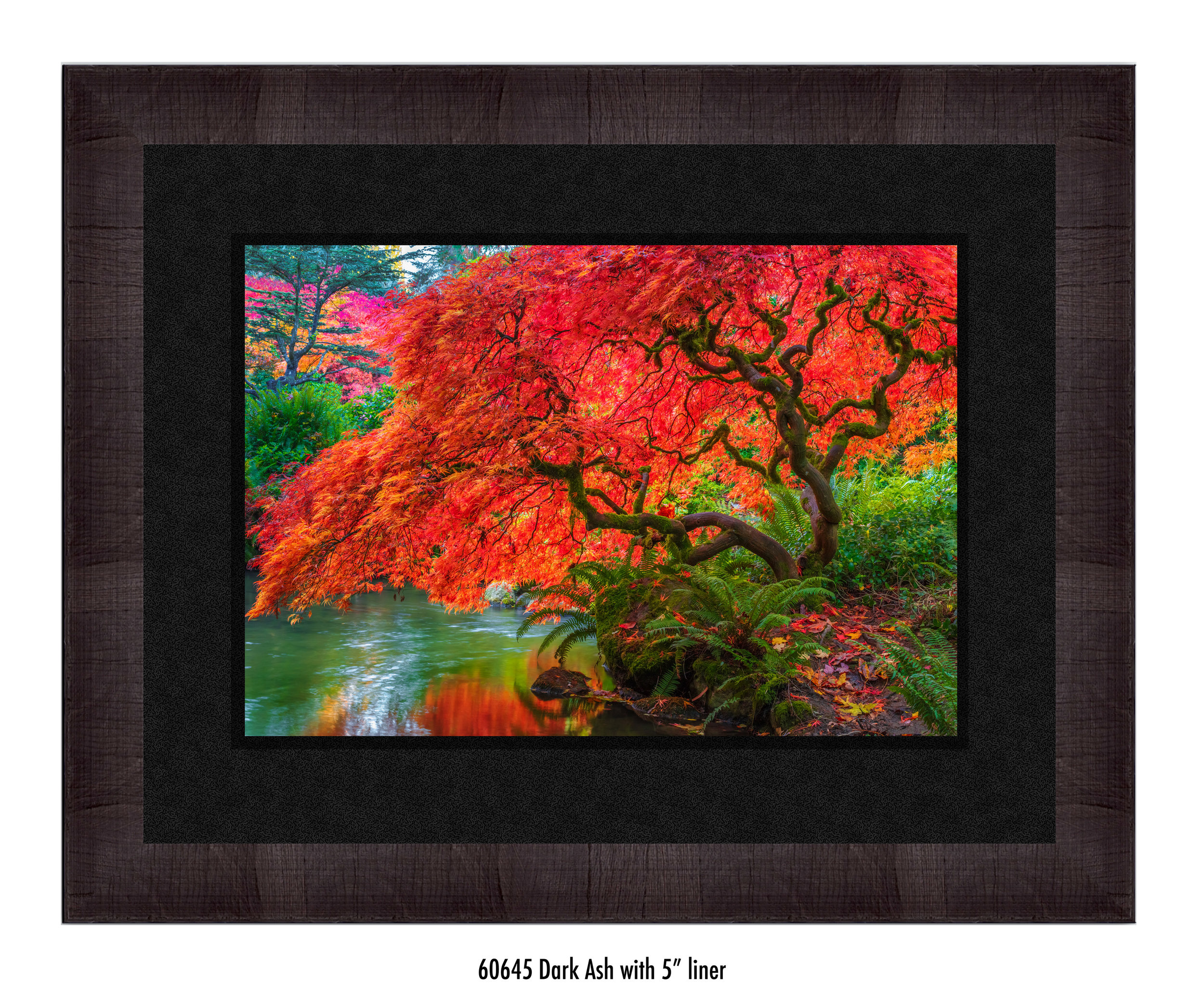 Tree-of-Fire-60645-5-blk.jpg