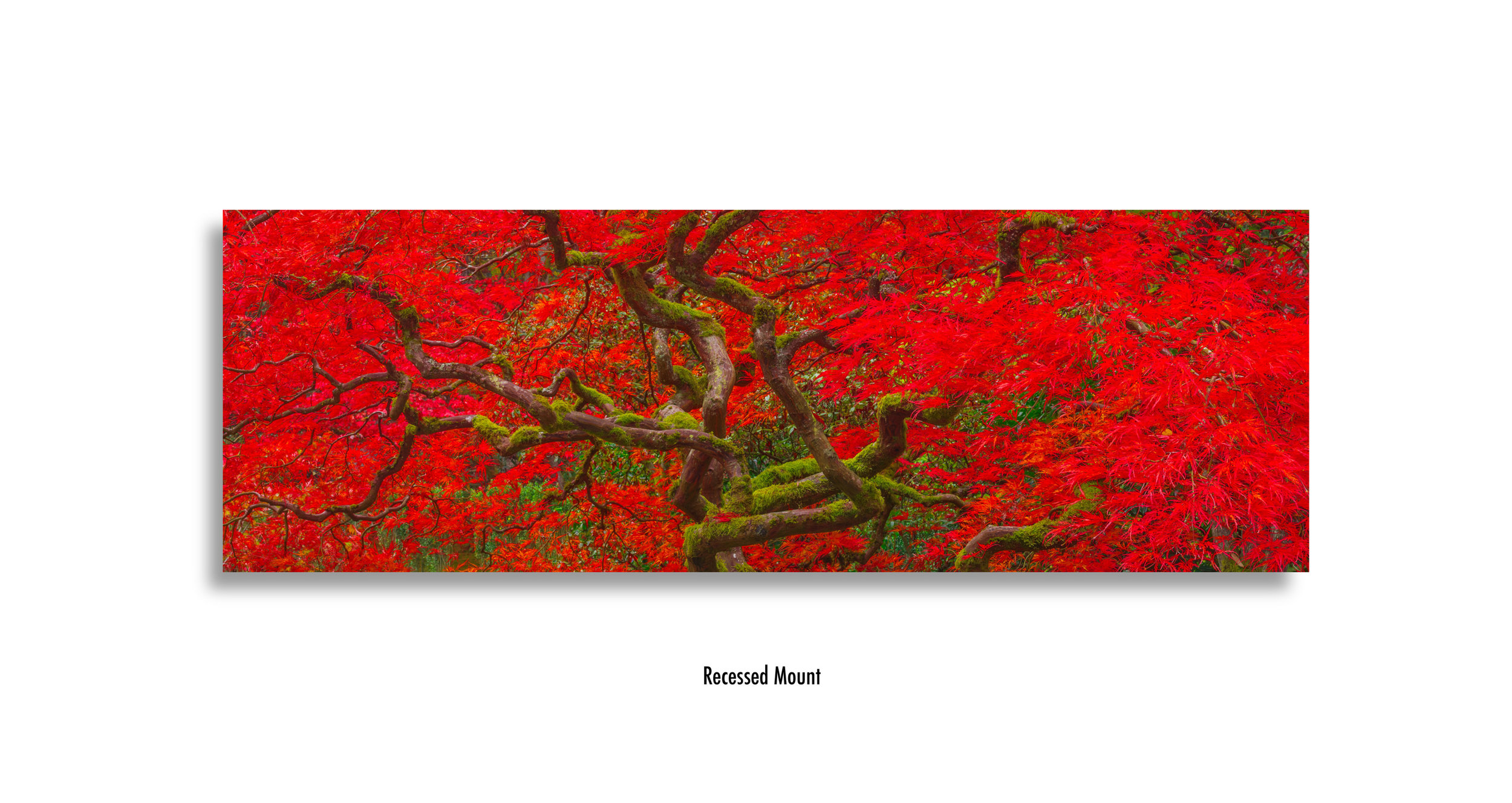 Avendasora-Leaf-recessed-mount.jpg