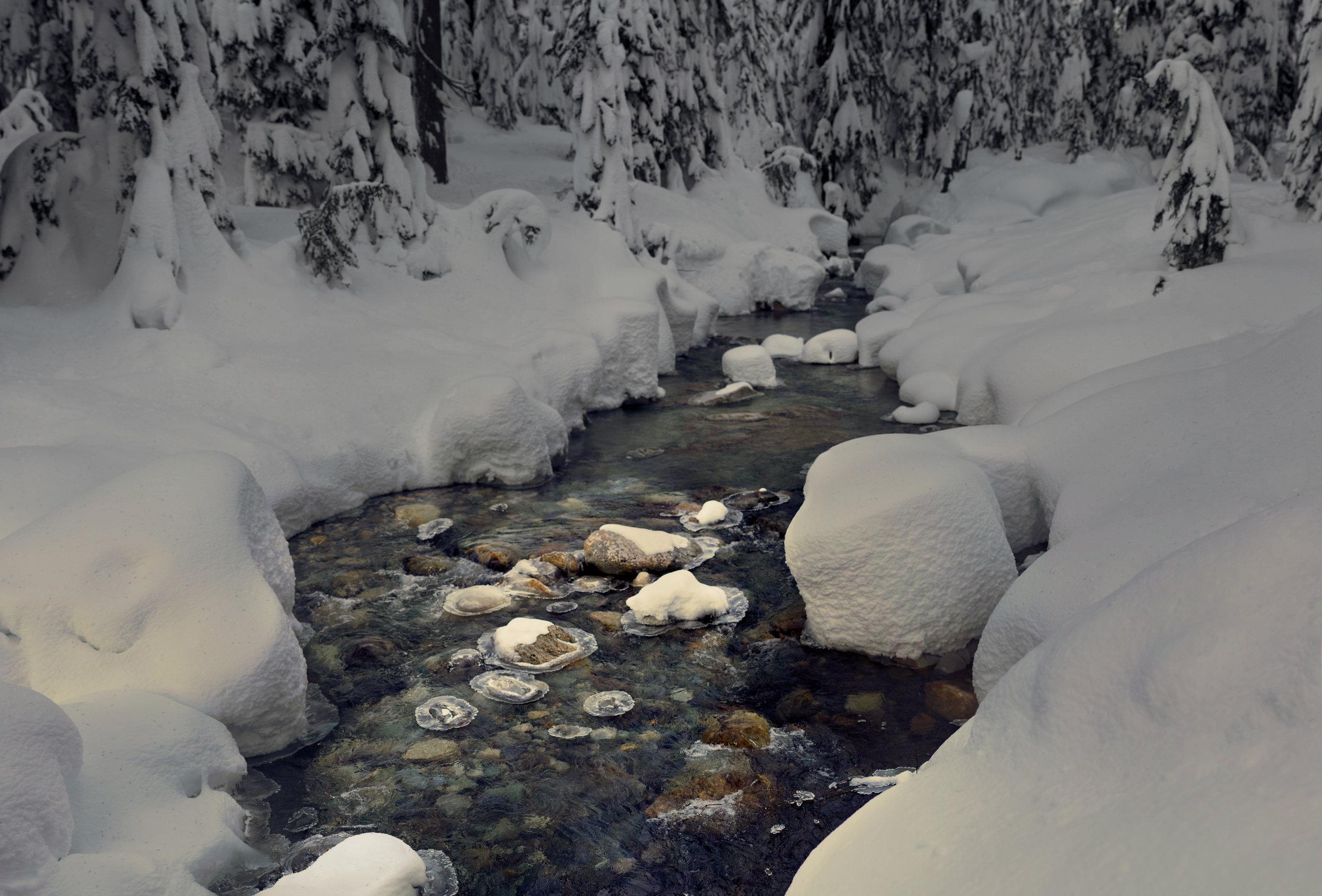 Winter's Heart -