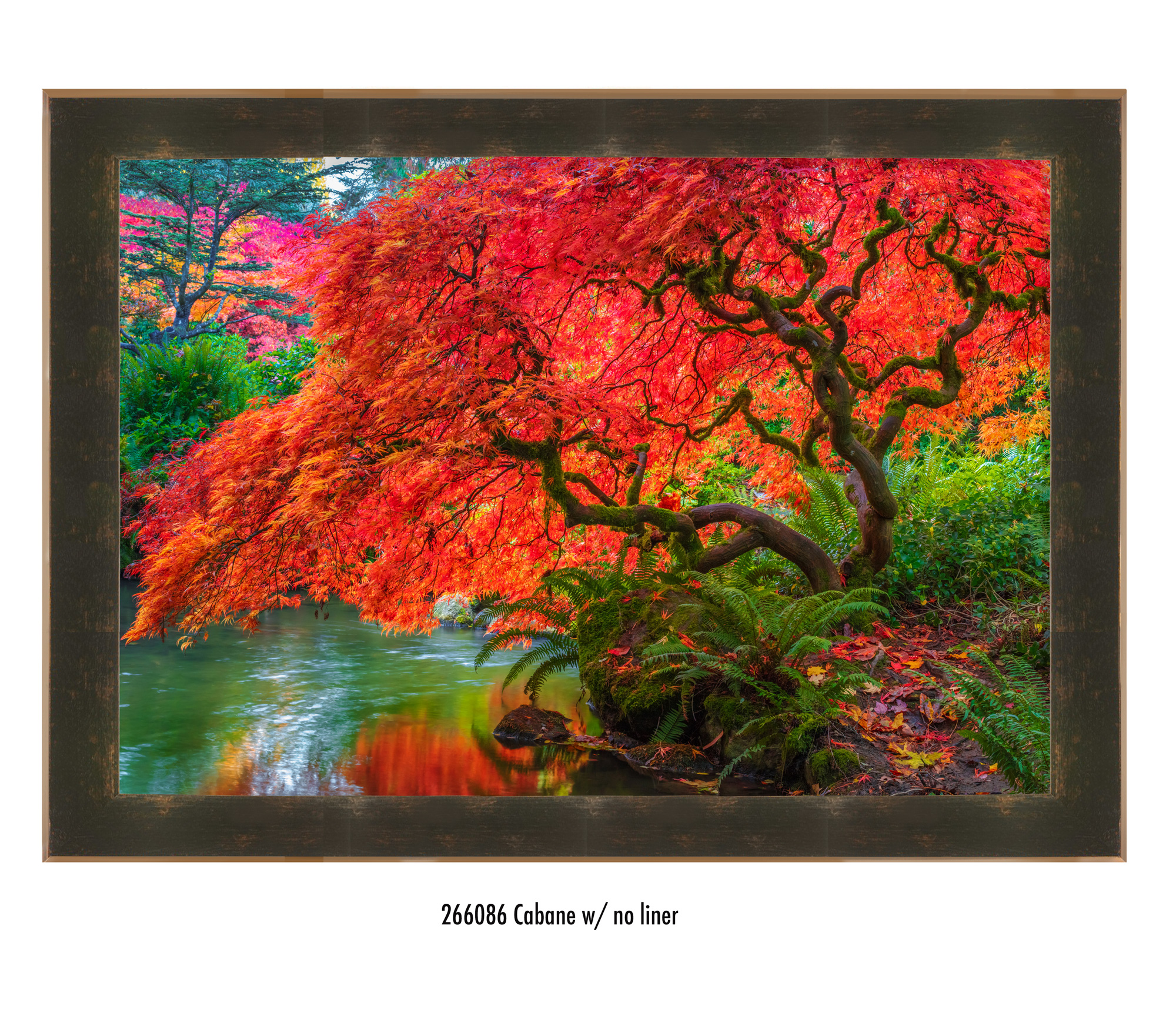 My favorite presentation of Tree of Fire is with this beautifully made Roma frame and no liner. The earth tones compliment each other so beautifully and the depth of the frame makes the entire piece pop so strongly.   30x40 artwork only, $3,000 or $300 with  ArtMoney  -with the Cabane frame - $4,500 or $450 with ArtMoney
