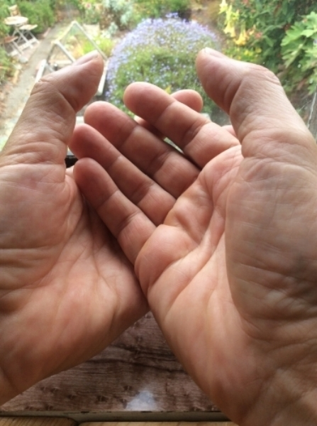 peter's hands