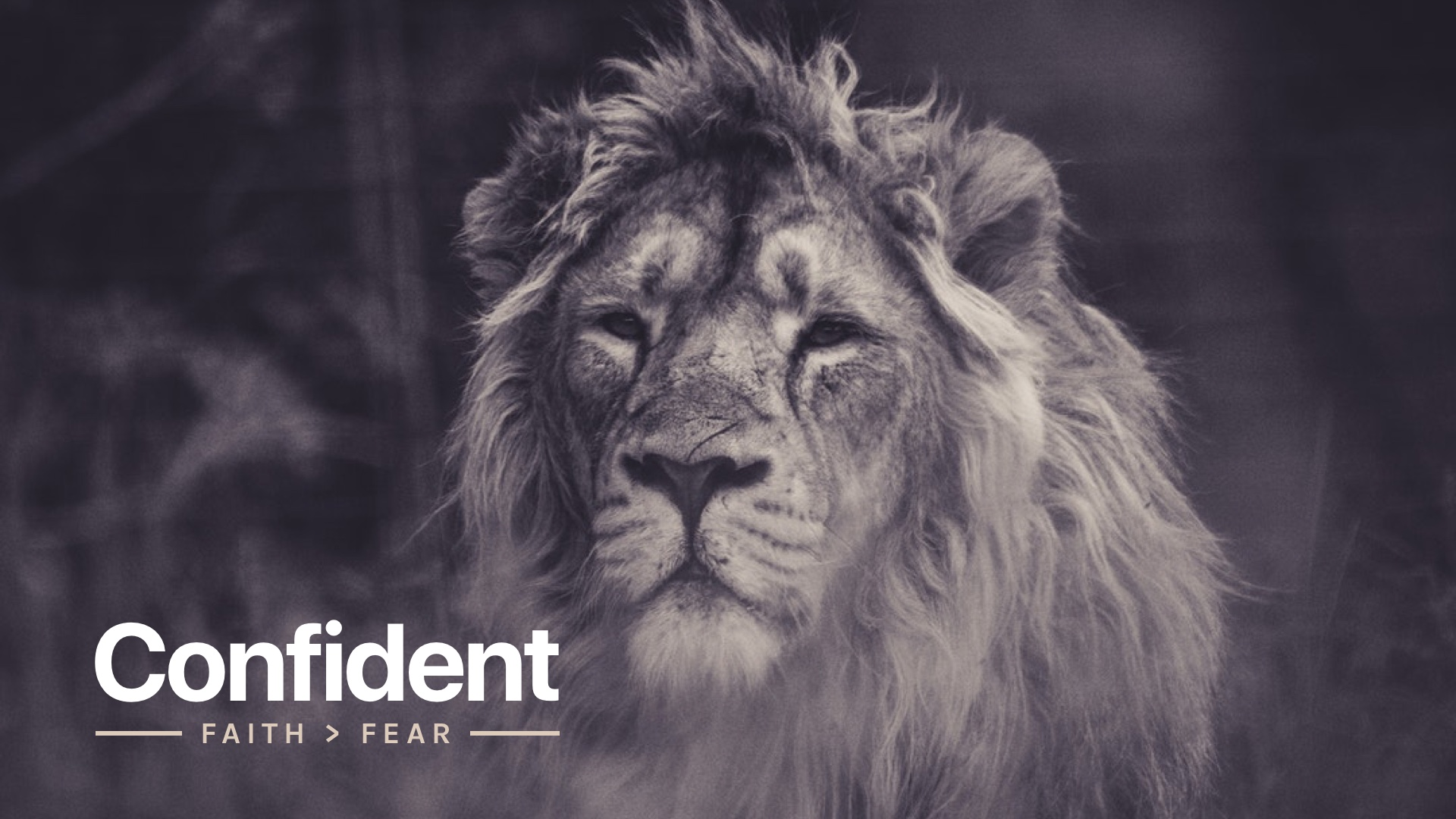 Confident-HD.jpg