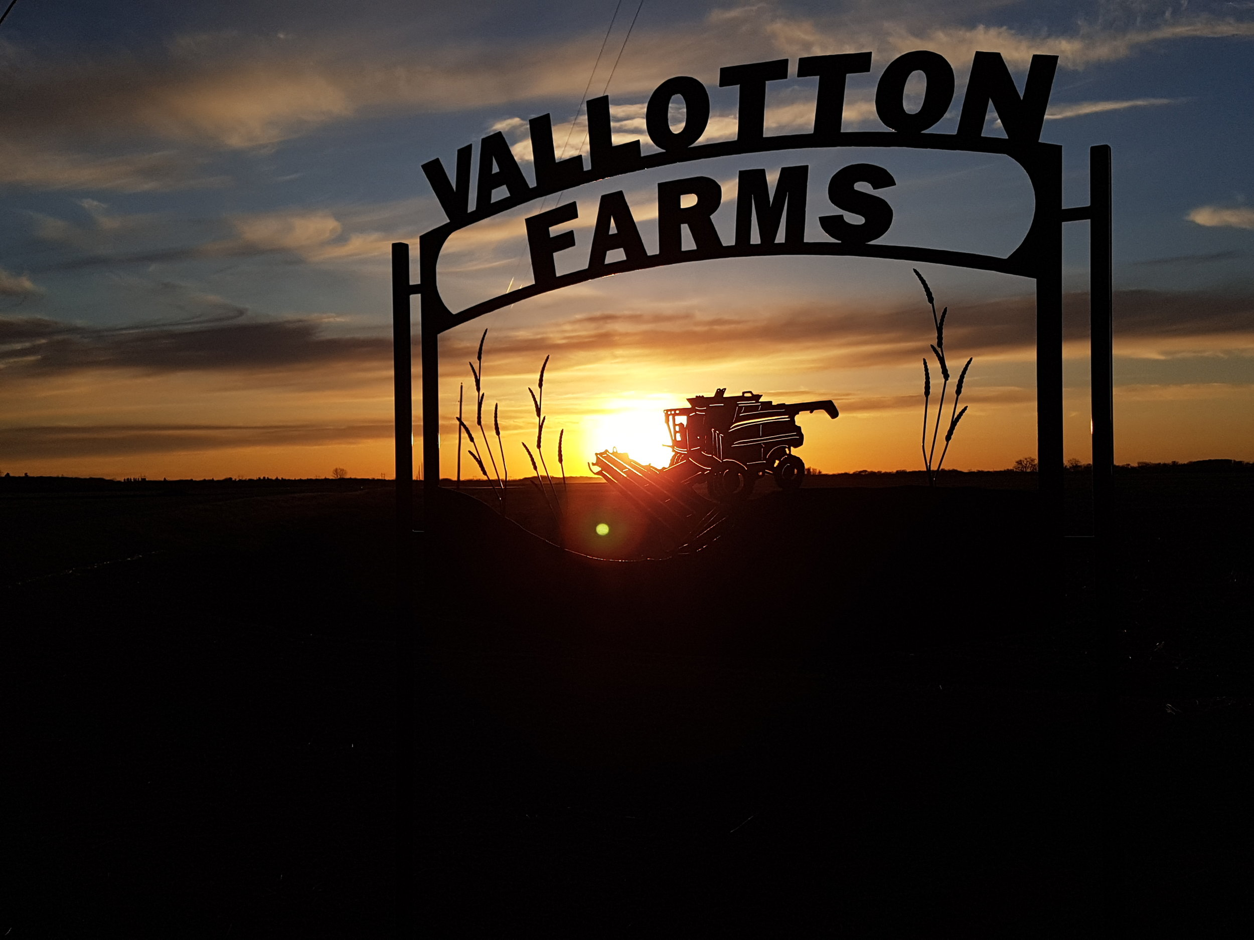 Farm Sign Sunset.jpg