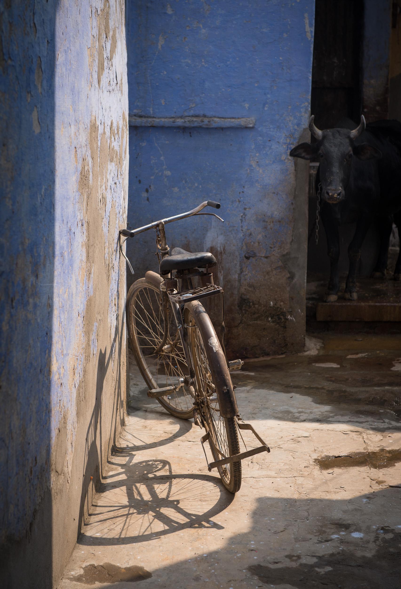 meyer-india-varanasi-18.jpg