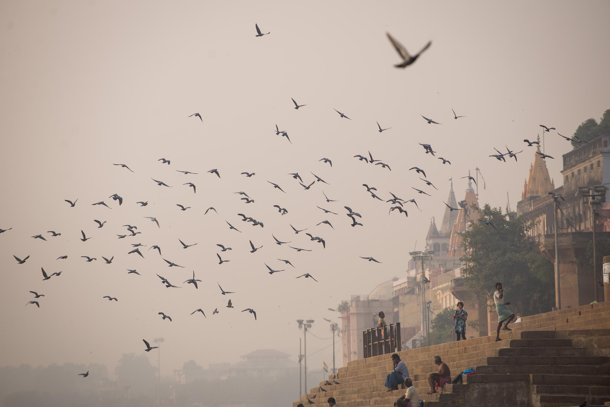 meyer-india-varanasi-31.jpg