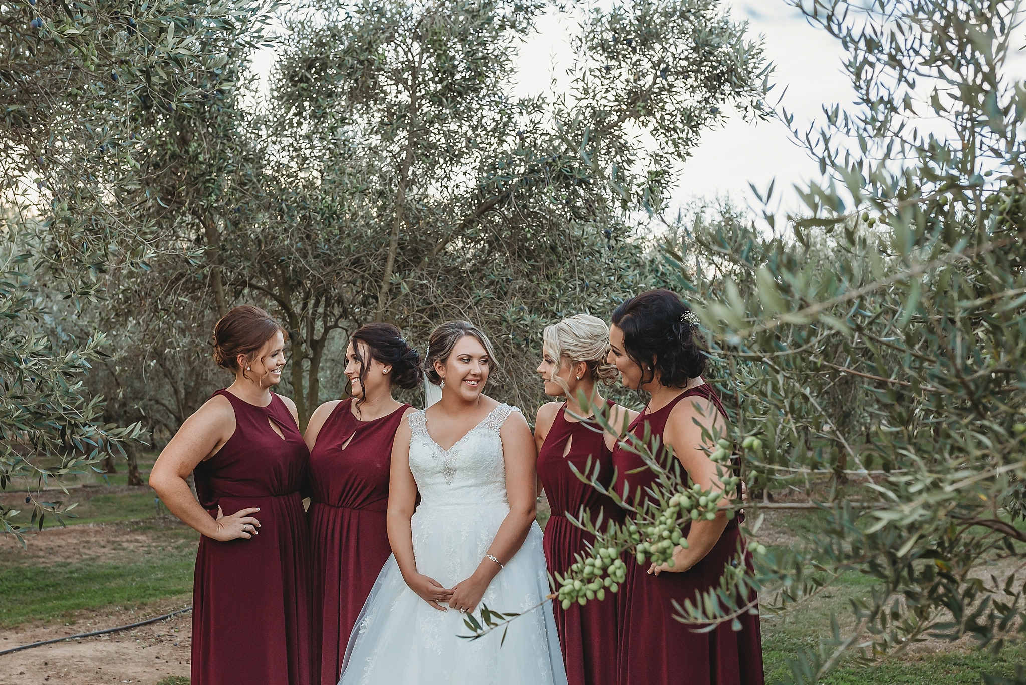 bridesmaids and bride in the olive groves