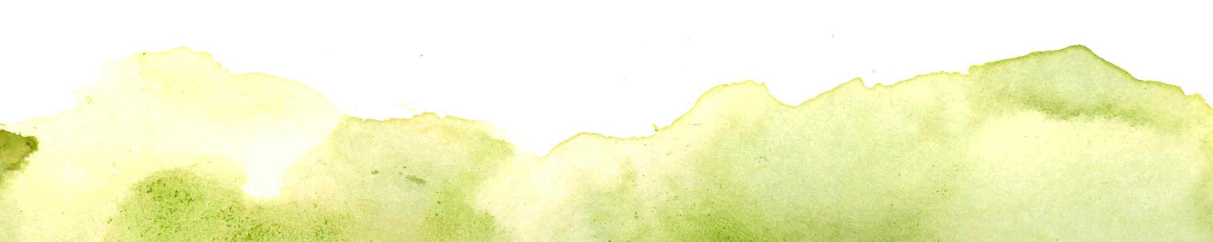 watercolor_pagebottom.jpg