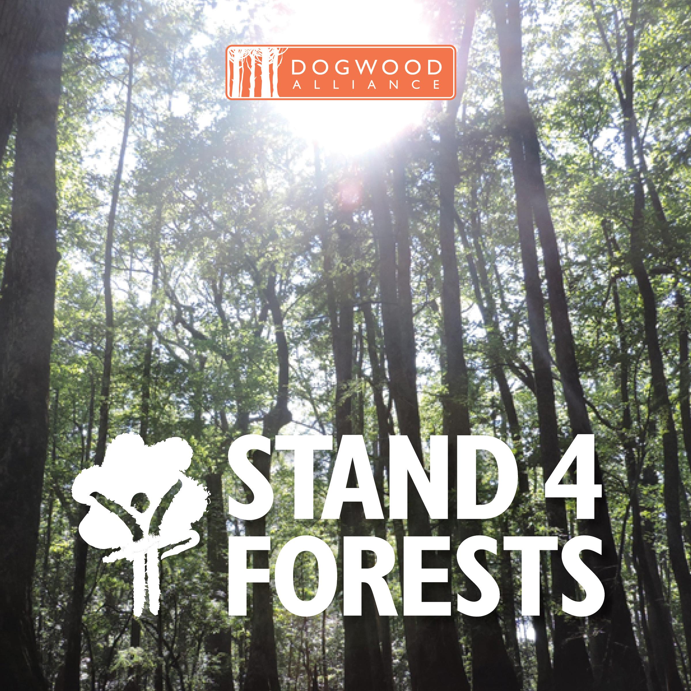 17-DWA-002_Stand4Forests_SocialMedia_v13.jpg