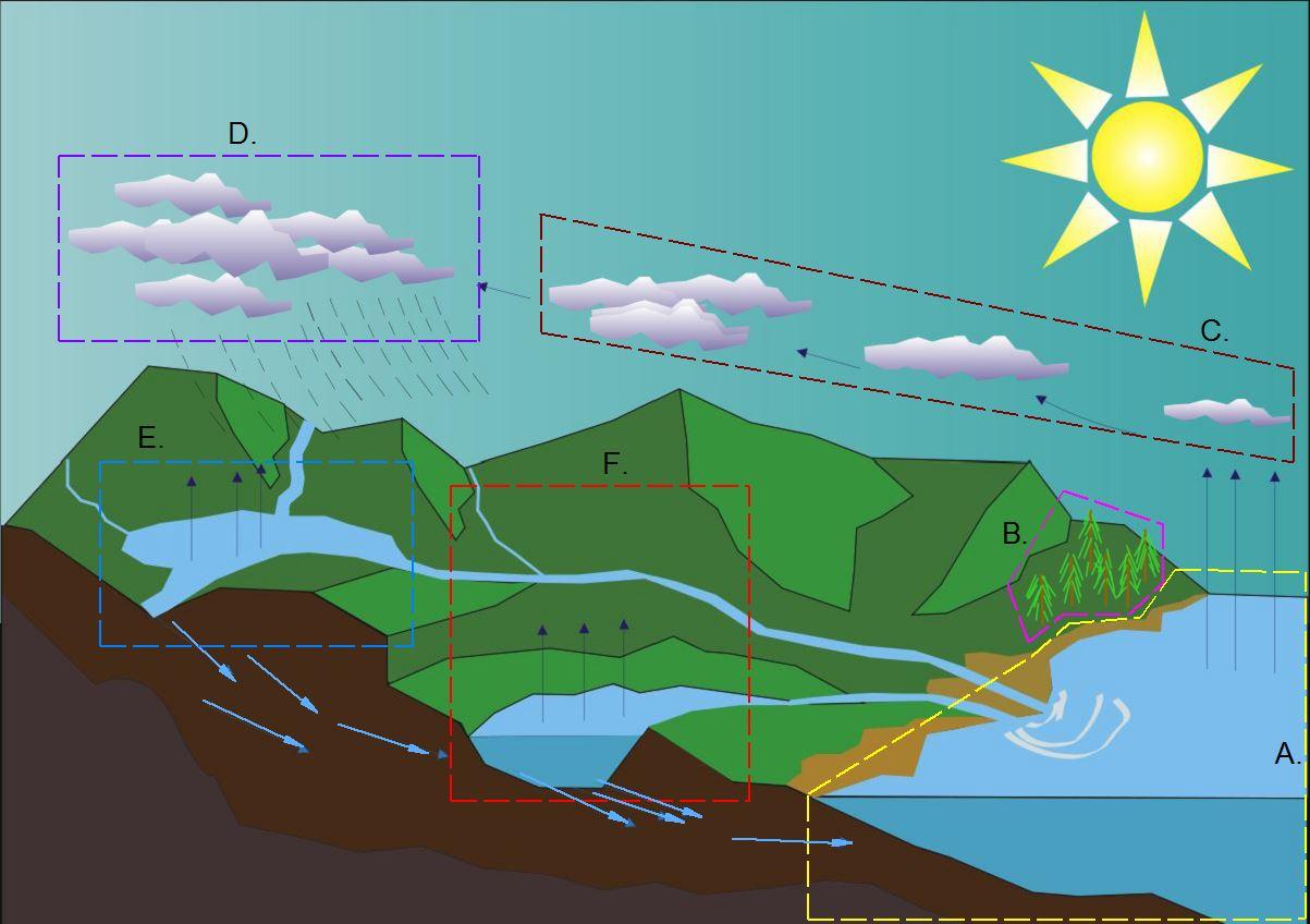 Water Cycle with Boundaries.jpg