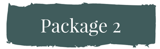 Package 1 (1).png