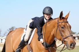 ENglish horse hug.jpg