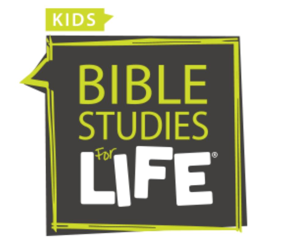 BSFL Kids (1).png