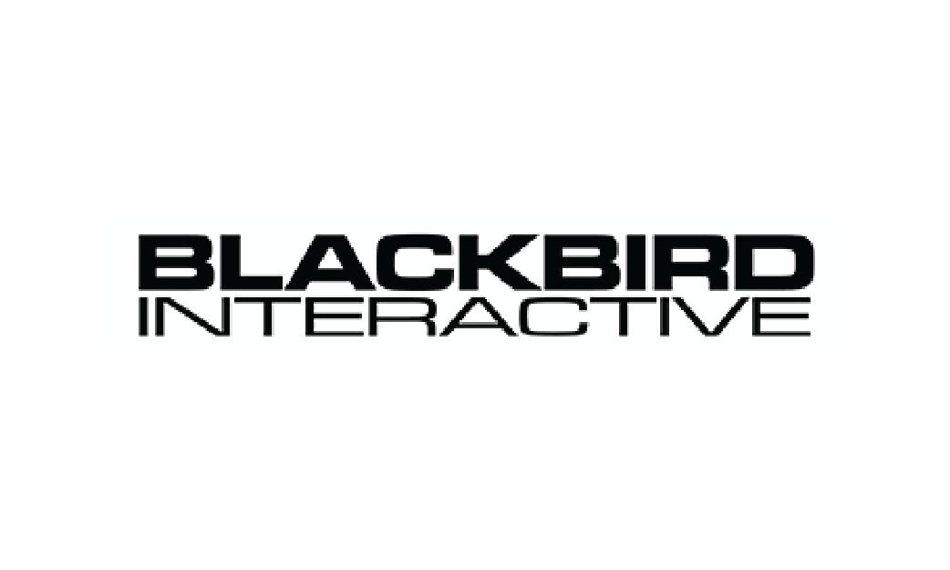 https://blackbirdinteractive.com