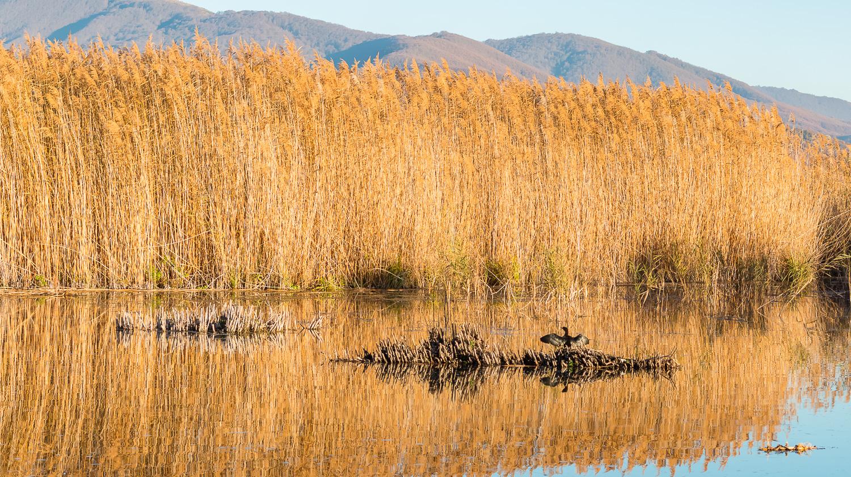 water-mountains-prespes-greece-01-stemajourneys.com.jpg