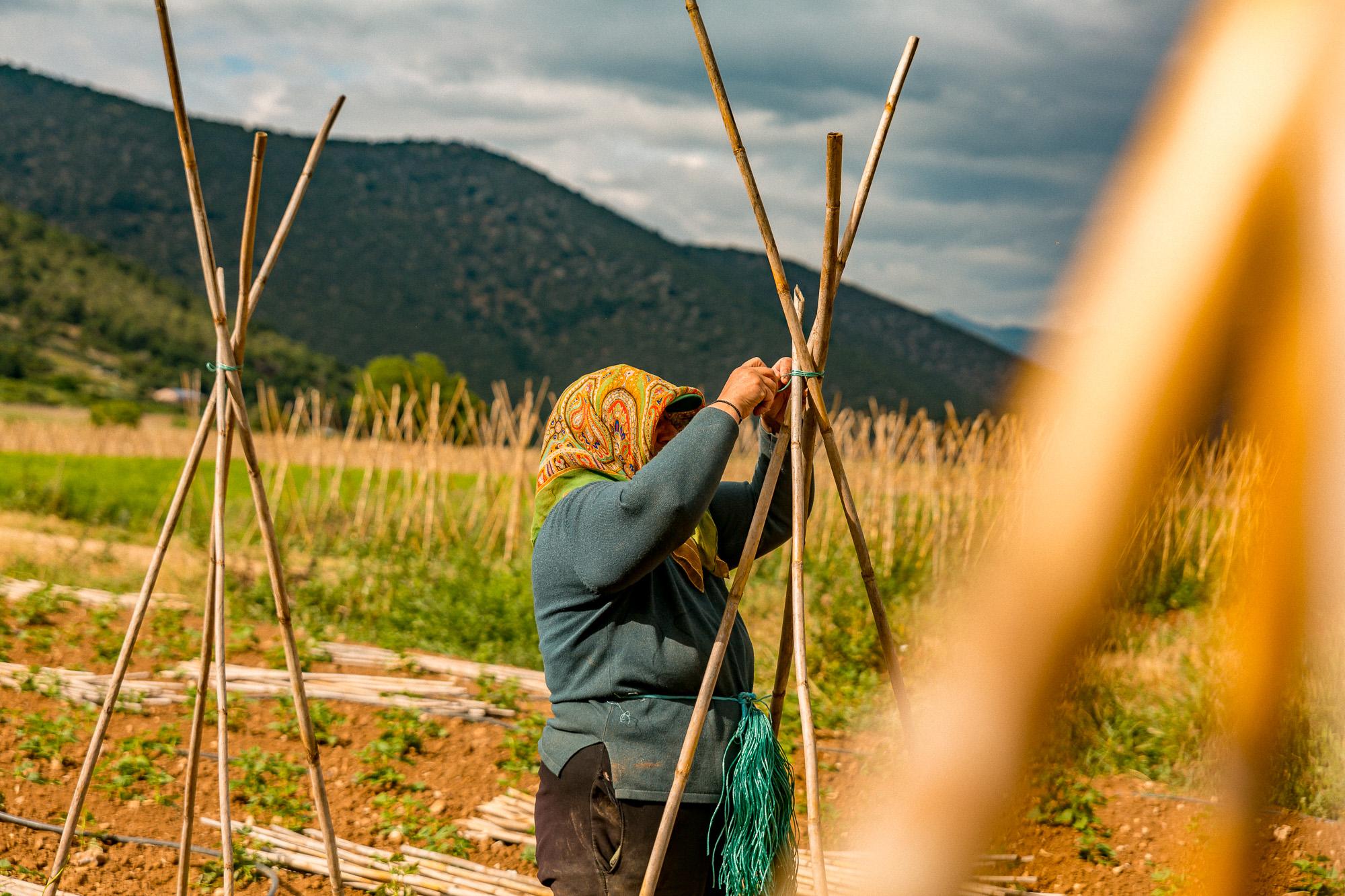 www.stemajourneys.com-prespes-2-greece-96.jpg