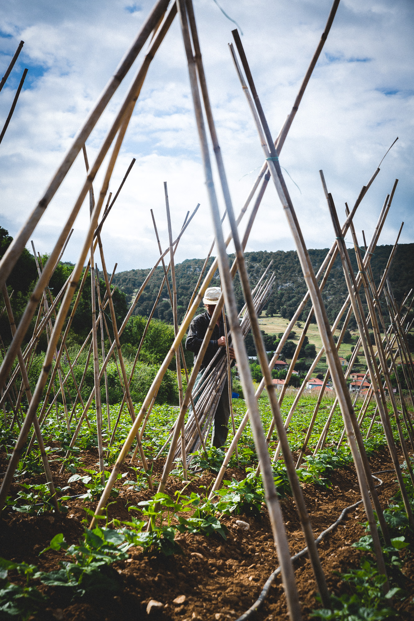 www.stemajourneys.com-prespes-2-greece-116.jpg